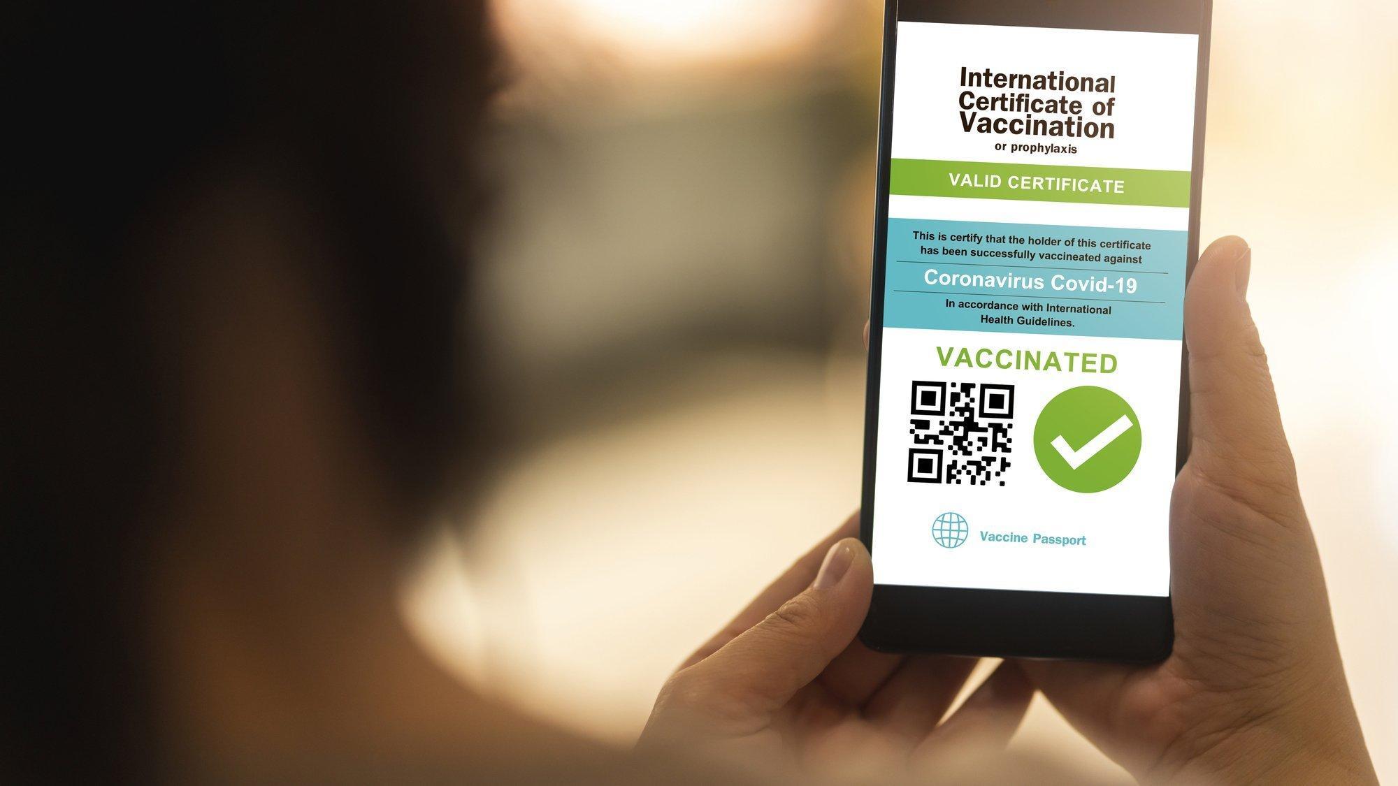 Eine ausgeblendete Person hält ihr Handy in der Hand, auf dem Bildschirm ist das Symbolbild eines digitalen Impfausweises zu sehen.