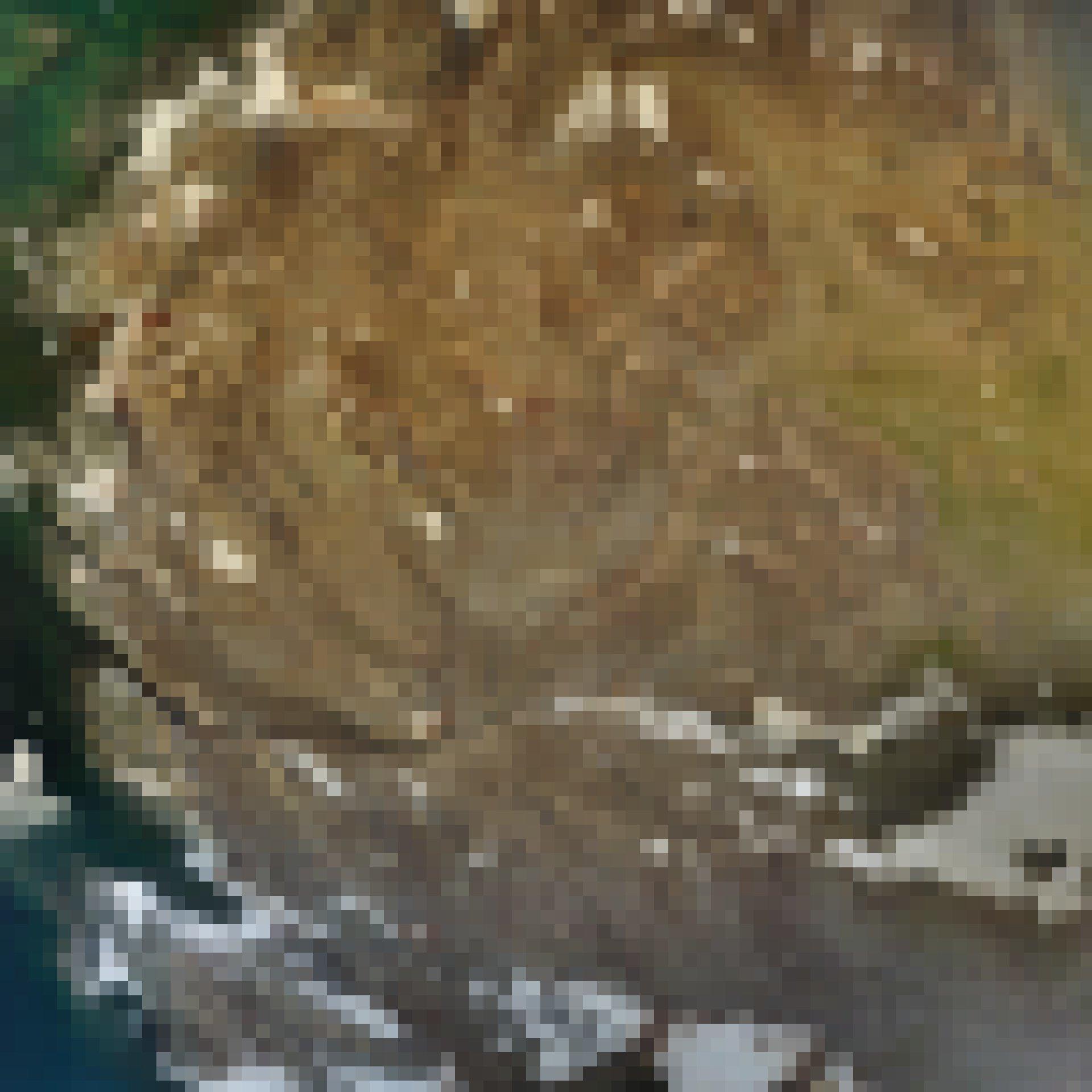 Luftaufnahme von Beagle Island in der Antarktis.
