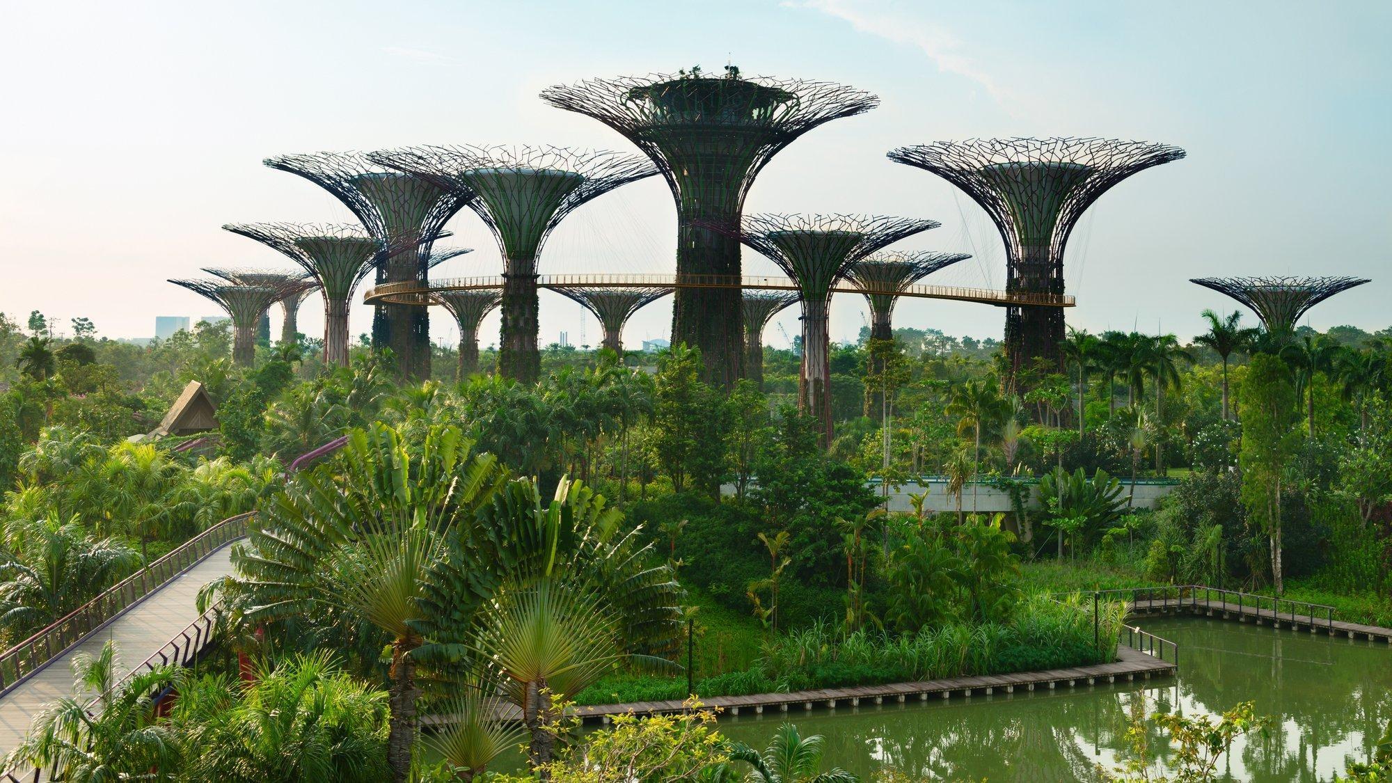 EIn palmenbestandener Park am Wasser, darüber elf fächerförmige, teils begrünte Stahlkonstruktionen