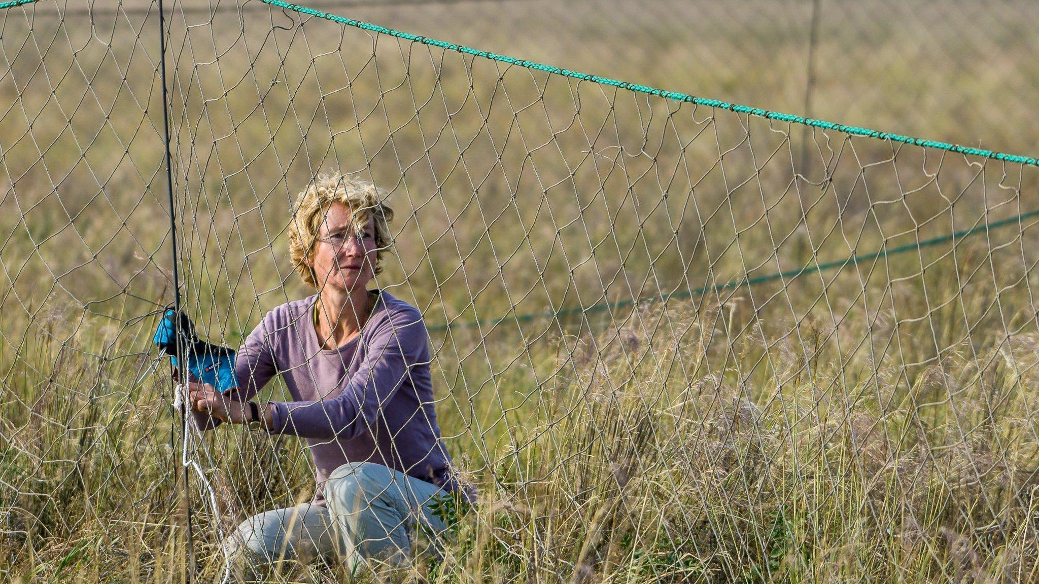 Eine Frau hockt neben einem grobmaschigen Netz im hohen Gras.