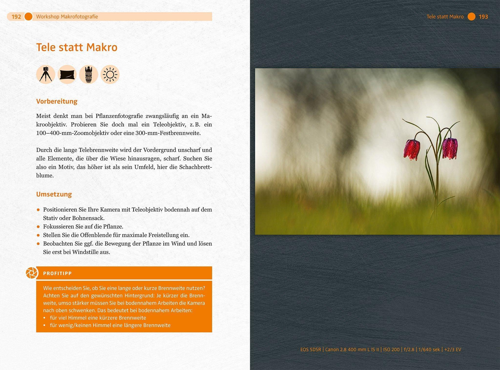 Doppelseite aus dem besprochenen Buch: Links sind Anweisungen zu lesen, rechts ein Beispielbild.