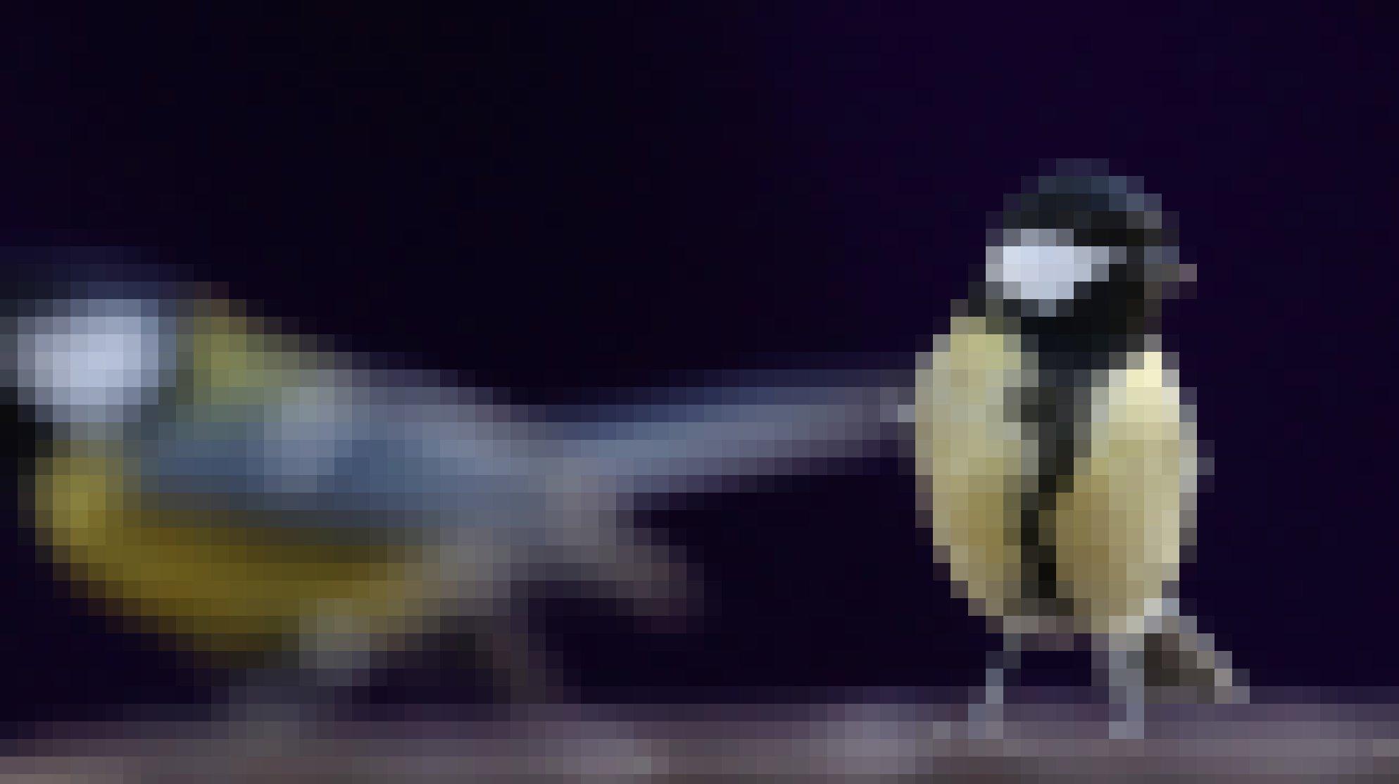 Ein kleiner Vogel mit gelber Brust, schwarzen Kopf und weißen Wangen sitzt auf einem Tisch und schaut direkt in die Kamera.