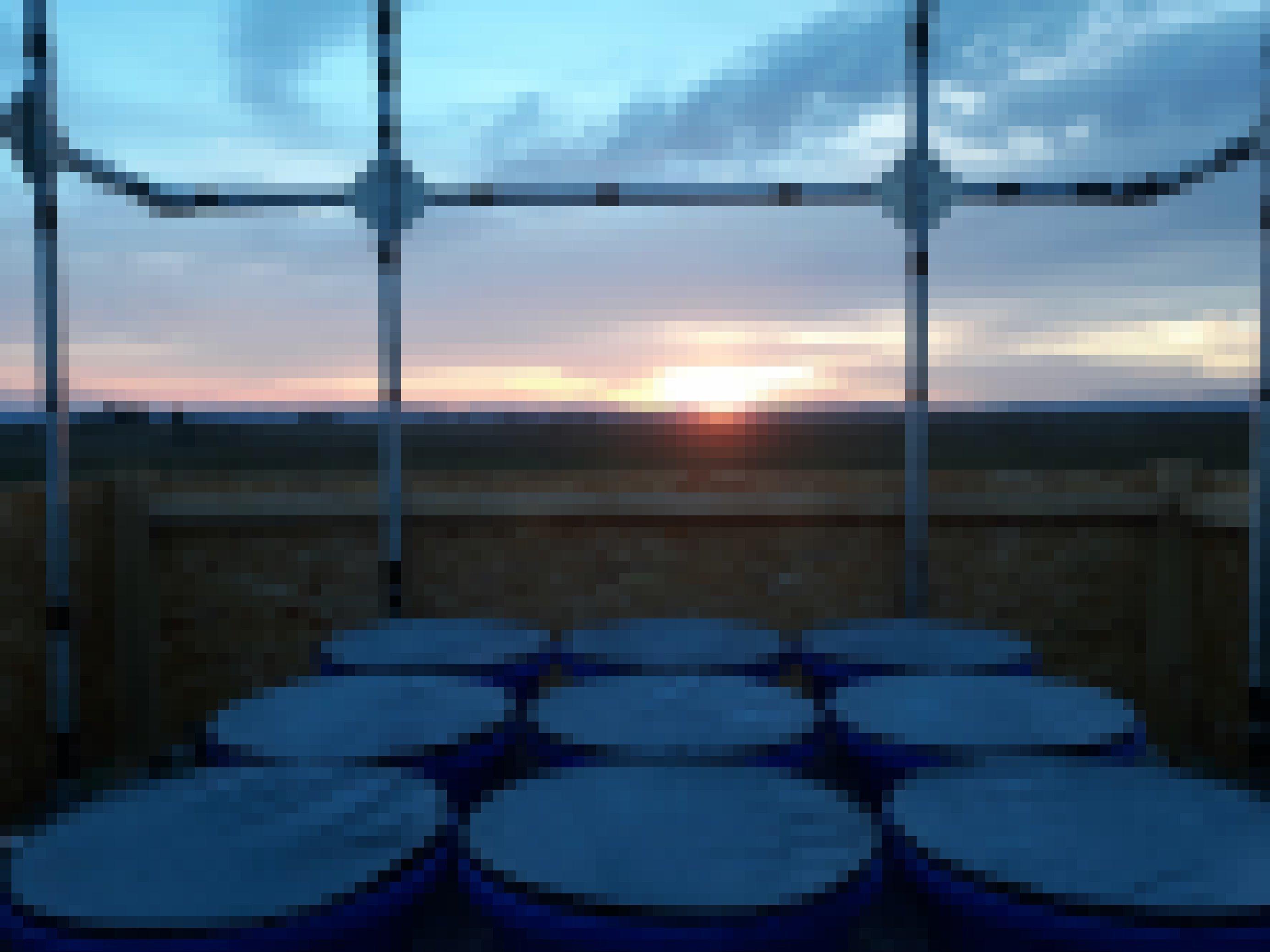 Das Bild zeigt den Versuchsaufbau: mehrere Käfige in der Abenddämmerung.