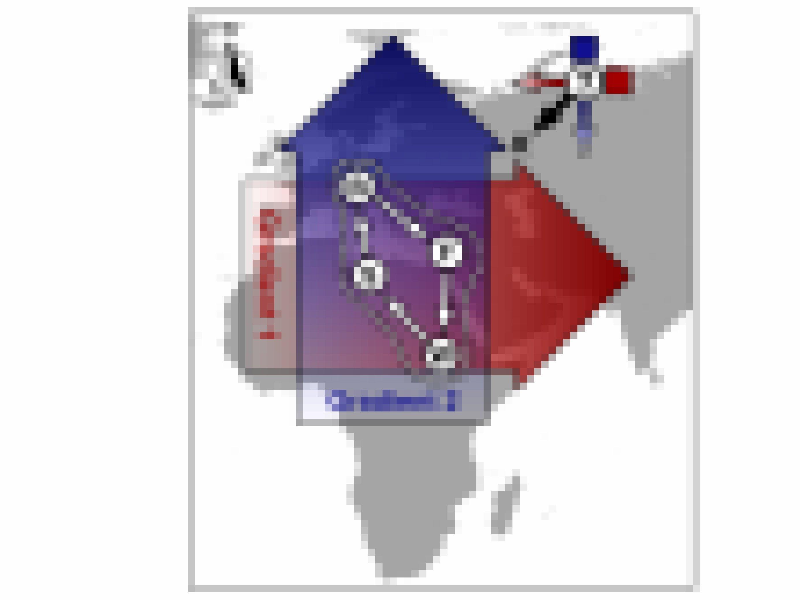 Eine Karte zeigt das Verbreitungsgebiet der Teichrohrsänger und die Zugwege von Mitteleuropa nach Afrika. Rote und blaue Pfeile markieren die Magnetfeldinformationen.