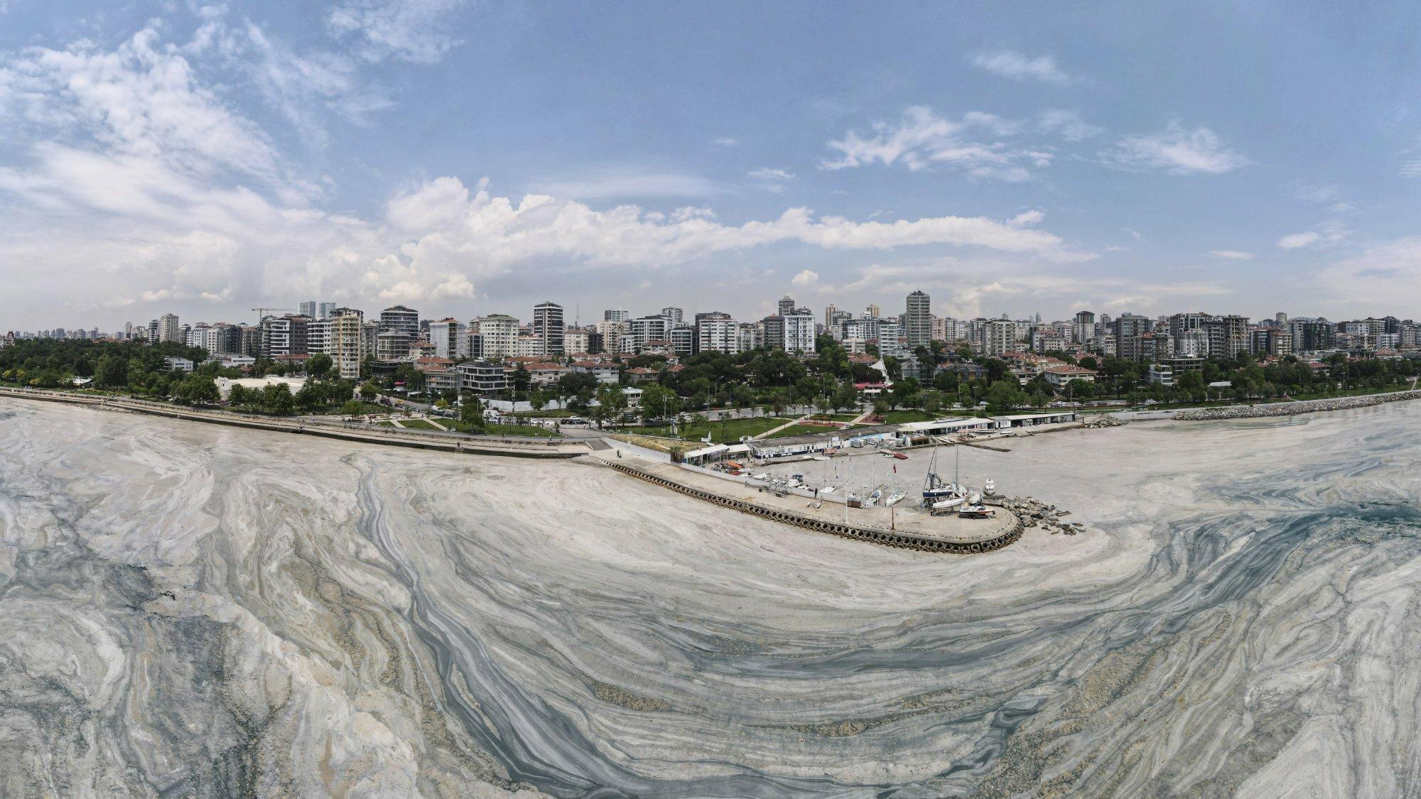 Luftbild der Küste vor dem Istanbuler Stadtteil Caddebostan, aufgenommen am 7. Juni 2021. Das Wasser ist weitflächig bedeckt mit hellen Schlieren aus Schleim.