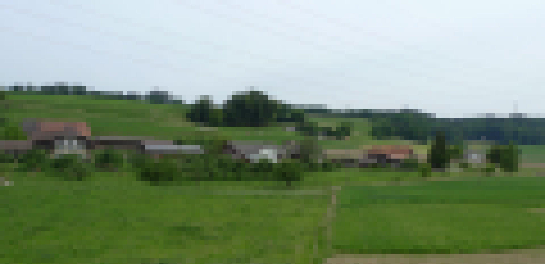 Blick auf das Dorf Alchenstorf mit Bauernhäusern im Emmental (Schweiz).