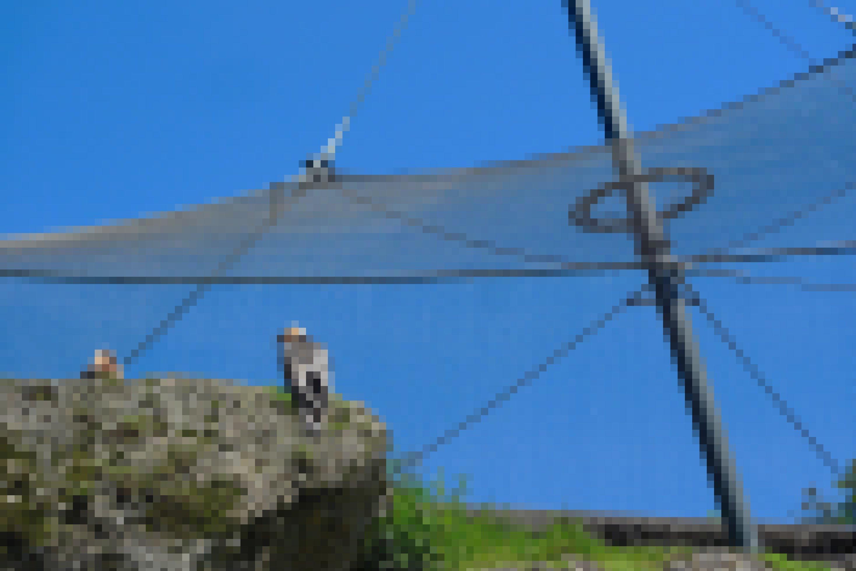 Zwei Bartgeier sitzen in der Voliere des Natur- und Tierparks Goldau in der Schweiz.