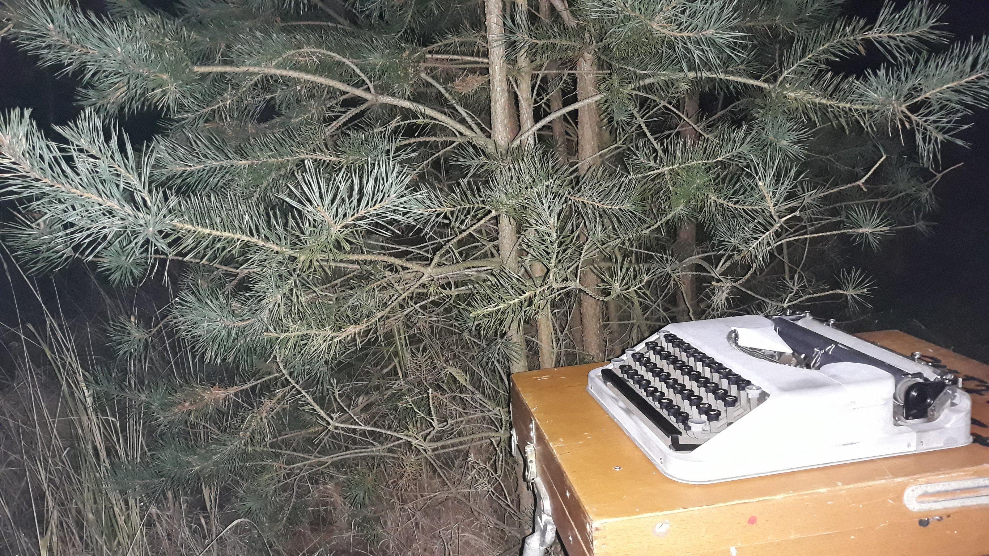 Der Klappschreibtisch mit der Hermes-Baby-Reiseschreibmaschine steht vor einer Kiefer im Wald. Es ist Nacht.