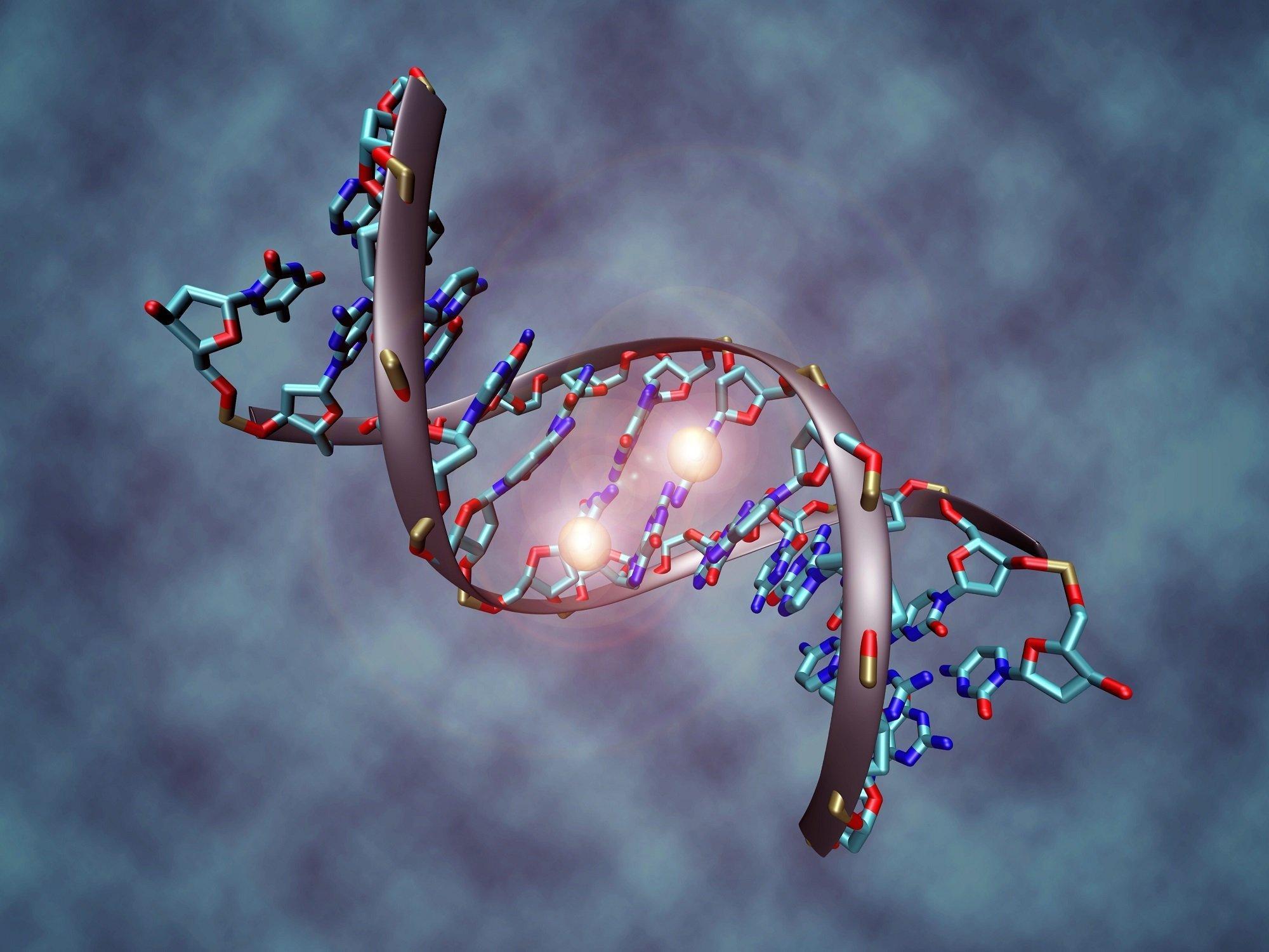 Grafische Darstellung einer methylierten DNA