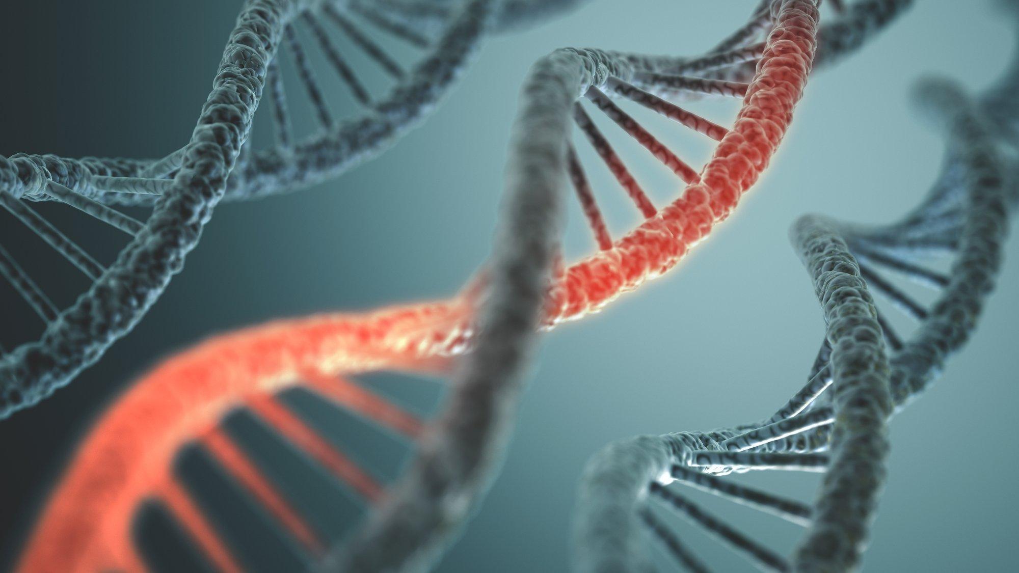 Langstruktur der DNA-Doppelhelix