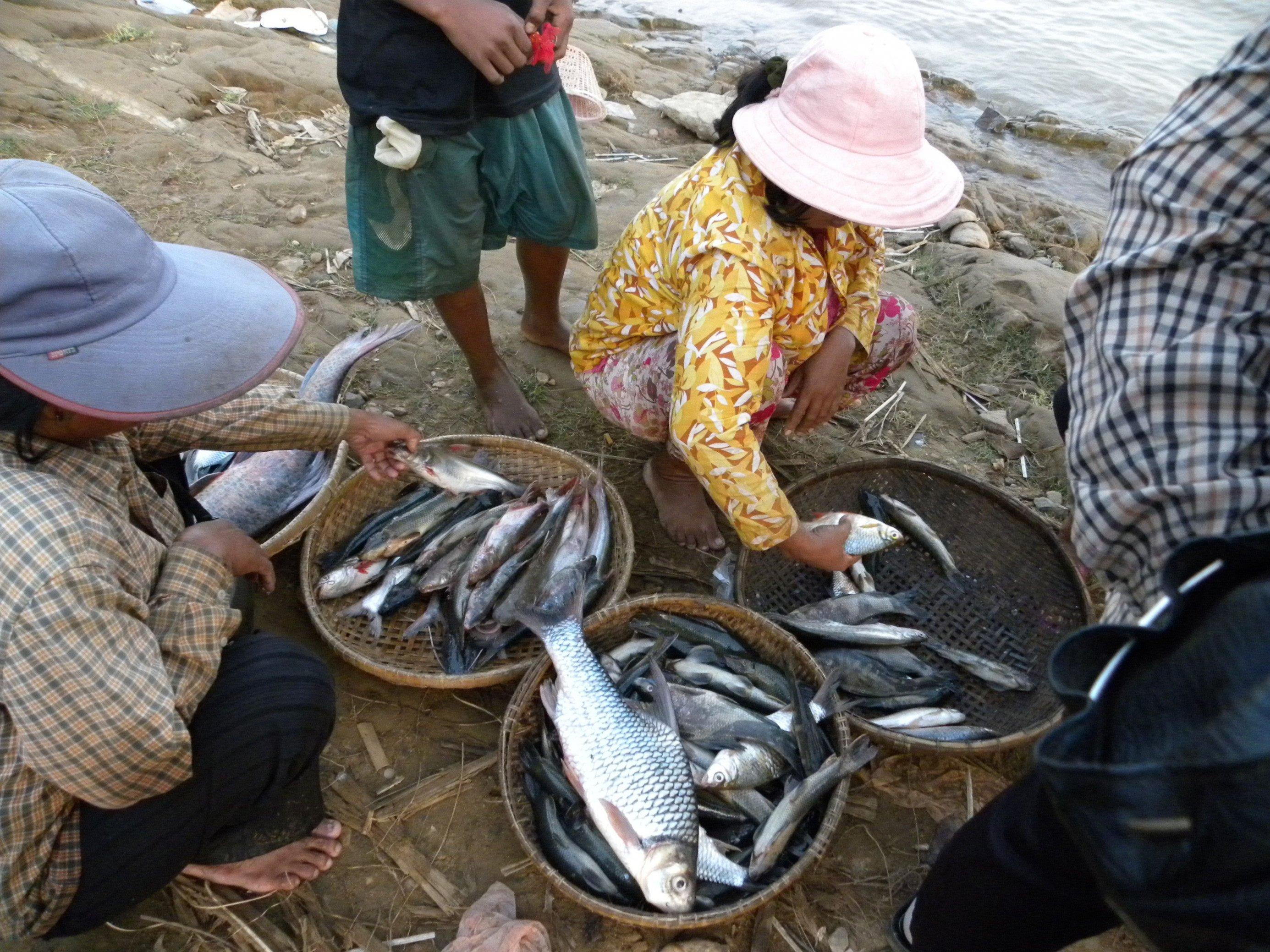 Zwei Frauen mit Sonnenhüten hocken am Ufer eines Gewässers vor drei mit Fischen gefüllten Körben. Jede hält einen Fisch in der Hand. Hinter und neben ihnen stehen zwei weitere Personen.
