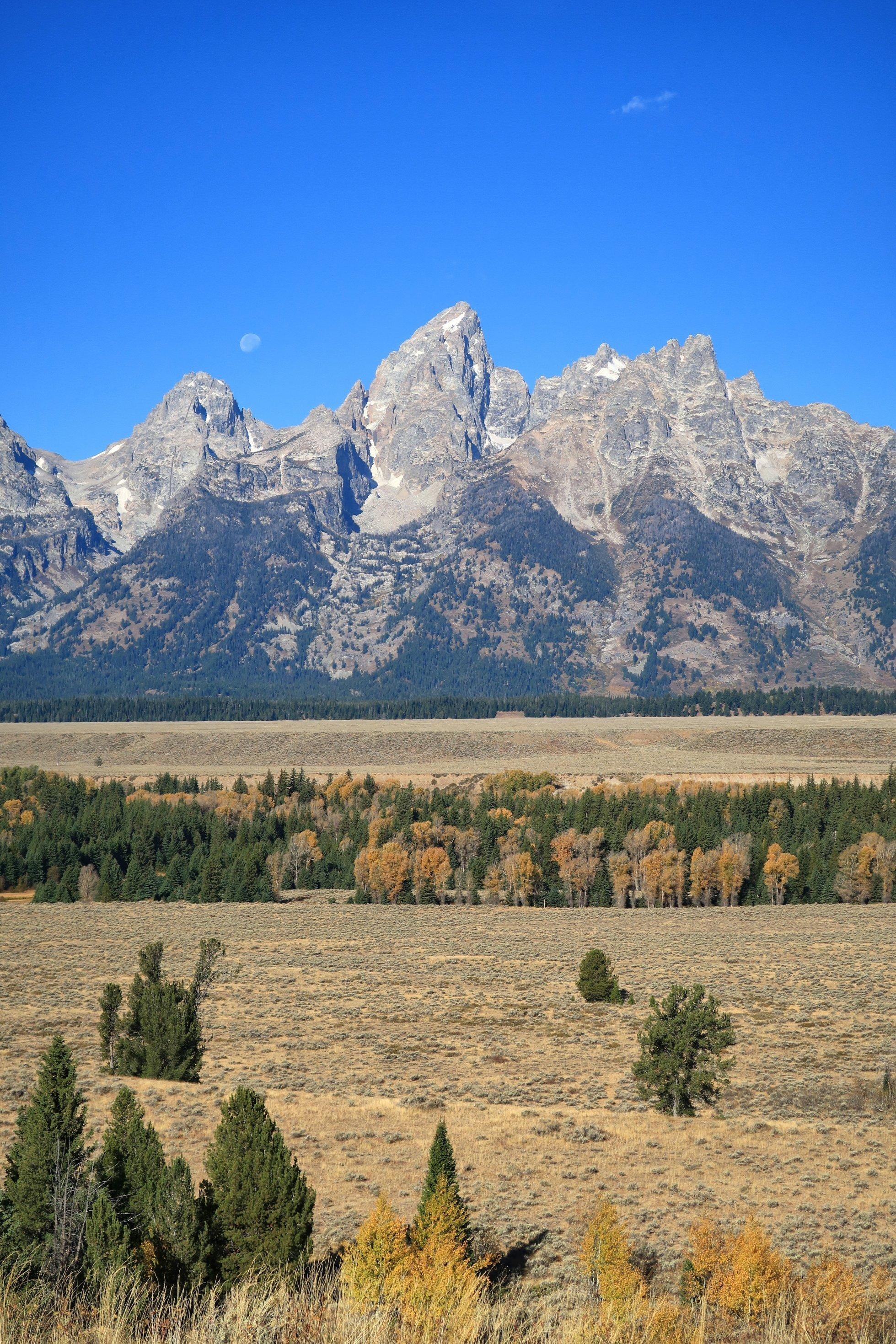 Im Vordergrund erstreckt sich eine leicht bewaldete steppenartige Landschaft. Im Hintergrund erheben sich mächtige Berge in einen blauen Himmel.