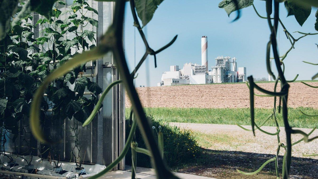 Climeworks baute und betreibt die weltweit erste kommerzielle Direktabscheideanlage, die 900Tonnen CO2pro Jahr aus der Umgebungsluft entfernt. Das hochreine CO2wird an ein Nachbargewächshaus geliefert, wodurch das Wachstum von Gemüse und Salat um bis zu 20Prozent gesteigert wird.