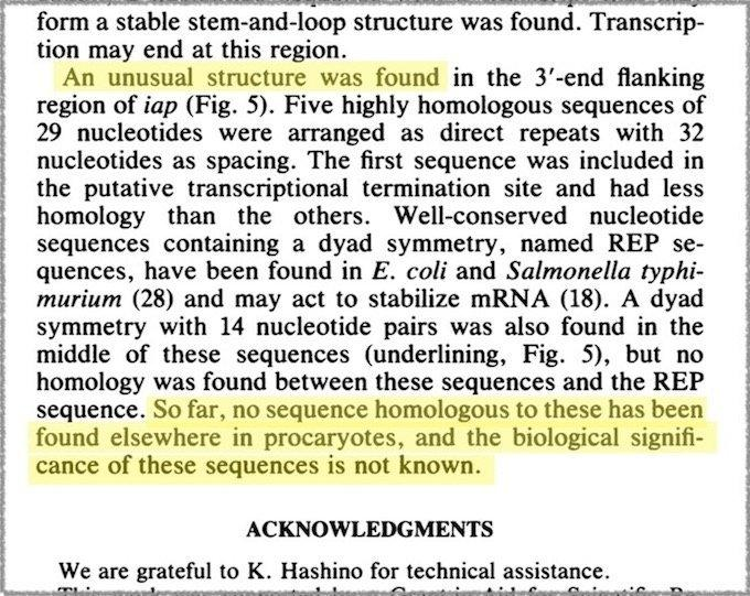 Der letzte Absatz im Artikel im Journal of Bacteriology.