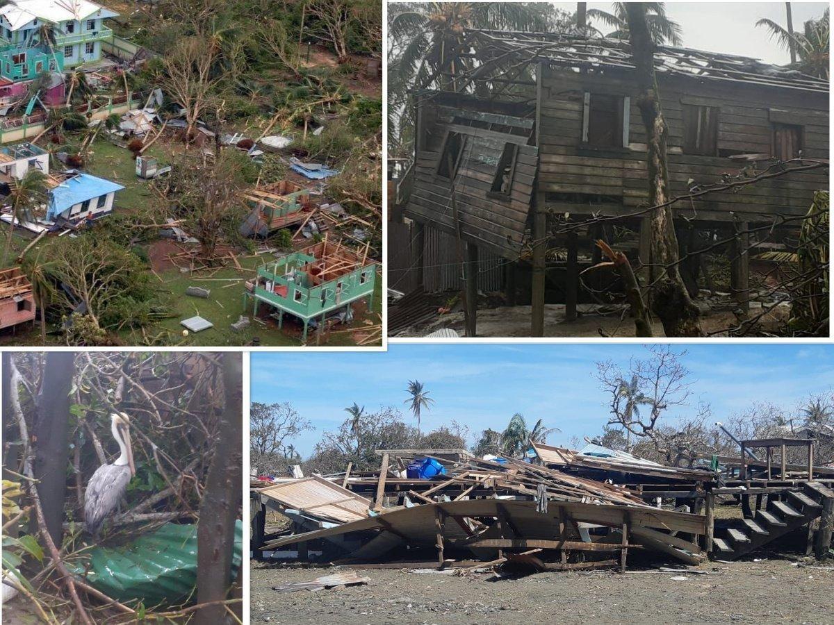 Die von den Stürmen zerstörten Holzhäuser. In einem hat sich ein Pelikan niedergelassen.