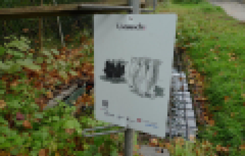 """Auf einem Plakat der Berner Krähenausstellung stehen sich Saatkrähen und Menschen gegenüber. Darüber steht auf Berndeutsch: """"Austausch"""". Um Ruhe in die Beziehung zwischen Rabenvögeln und Menschen zu bringen, ist eine Mediation nötig, eine Art """"Paartherapie""""."""