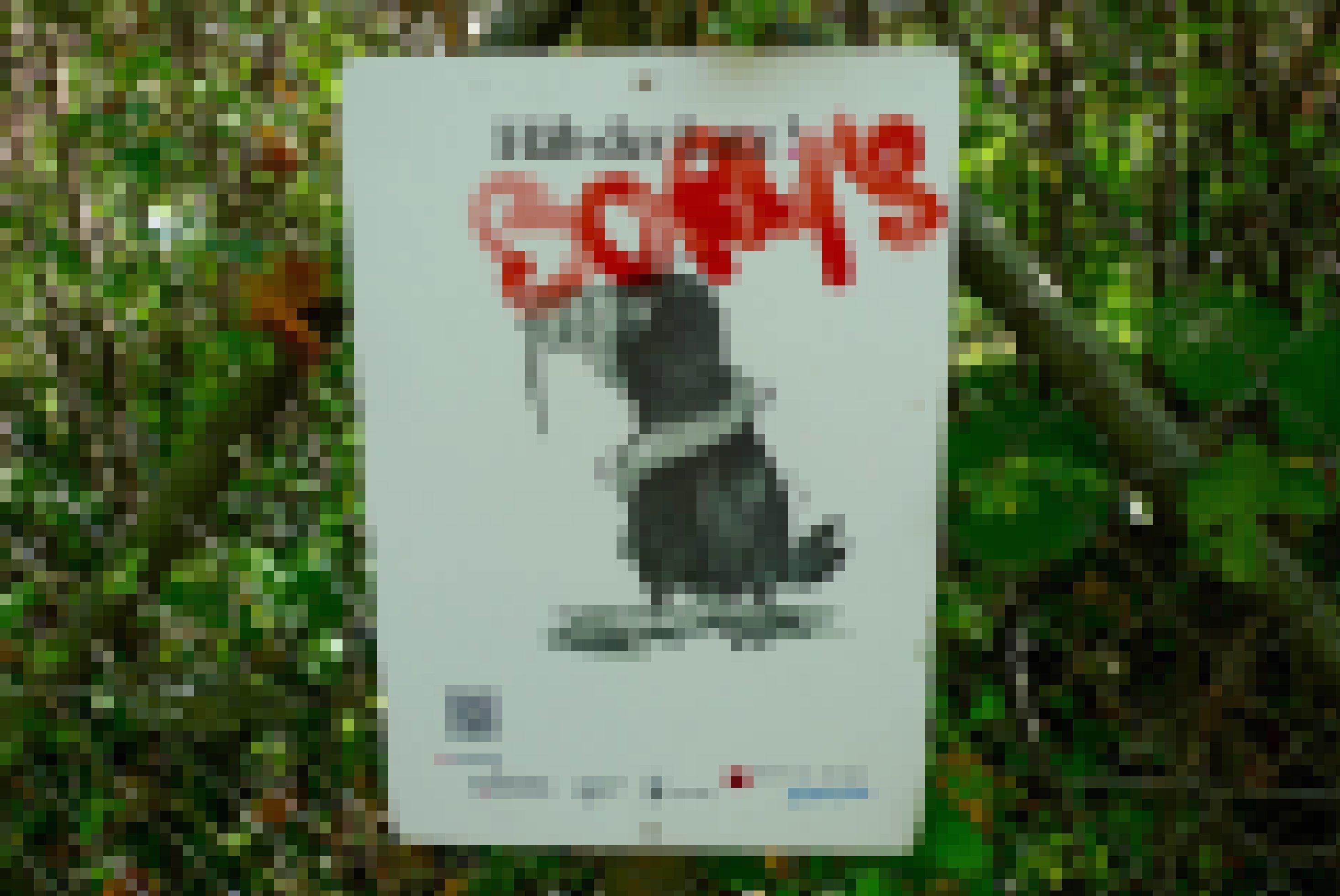"""""""Saatkrähe, halt den Schnabel!"""" Mit humoristischen Plakaten versucht eine Berner Ausstellung, das angespannte Verhältnis von Saatkrähen und Menschen zu entspannen. Das Plakat zeigt eine Saatkrähe, deren Schnabel von einer Schlange zugehalten wird."""