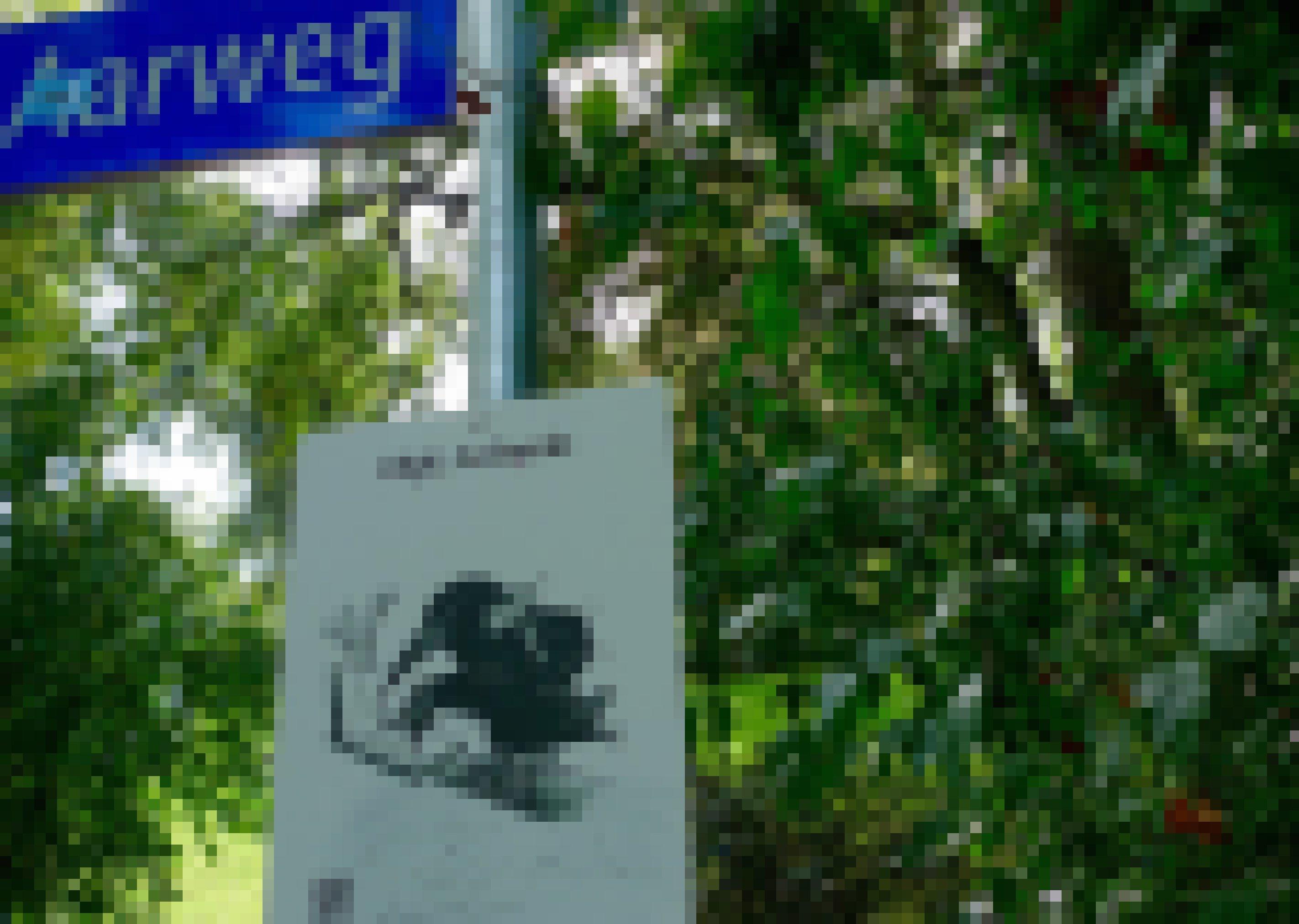Ein weiteres Plakat der Berner Rabenvögel-Ausstellung. Es zeigt eine Saatkrähe, die ein Nest baut. Überschrieben ist es mit: diplomierter Architekt. Geschickt bauen Saatkrähen die Nester in ihren Kolonien – eben wie diplomierte Architekten. Der Blick auf diese Fähigkeit soll Sympathien für die Rabenvögel wecken. Dies erhoffen sich die Ausstellungsmacher in Bern.