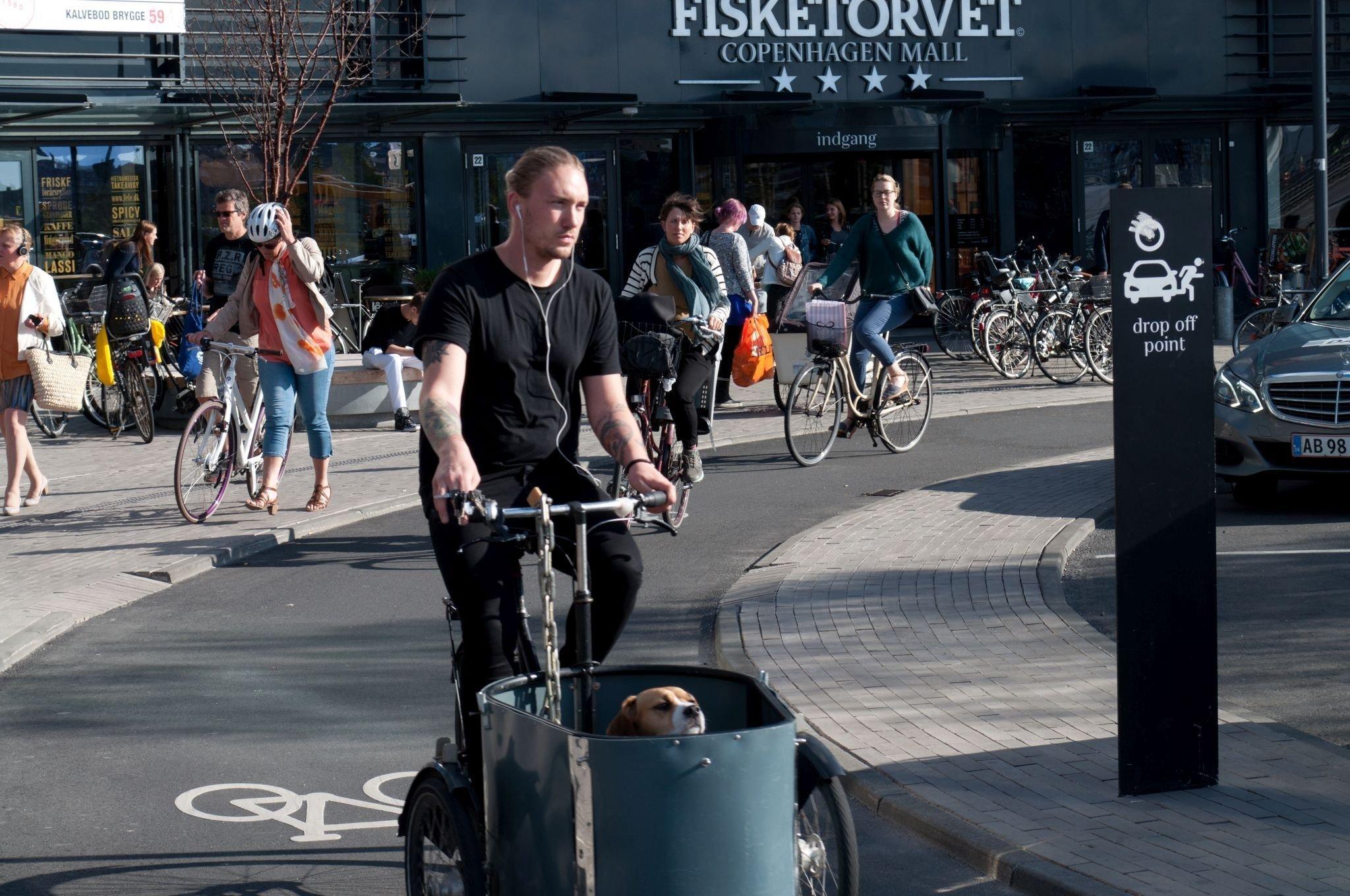 Ein Lastenradler transportiert seinen Hund