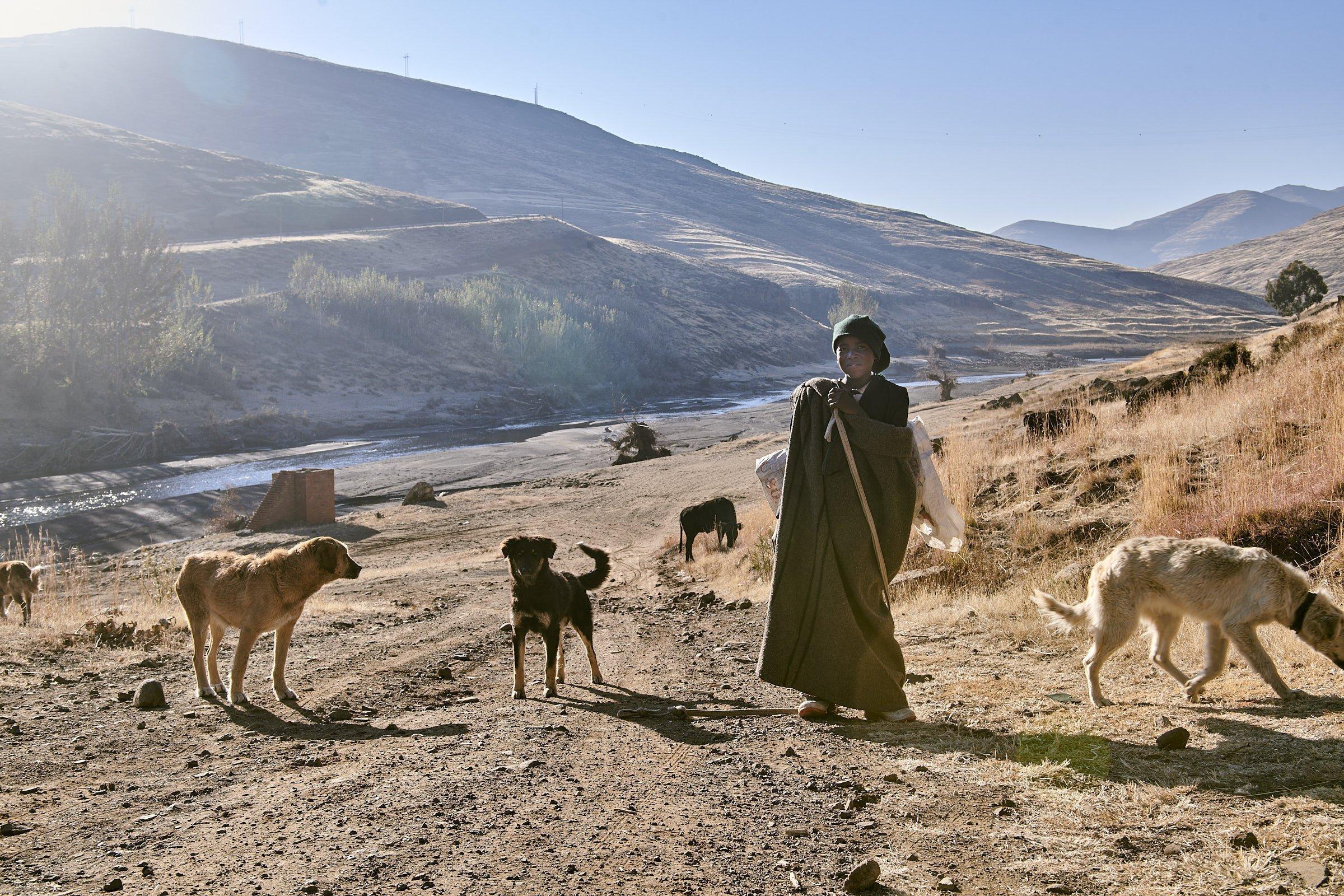 Der Hirtenjunge ist in eine Wolldecke gehüllt, umringt von seinen Hunden steht er am Flussufer des Senqu