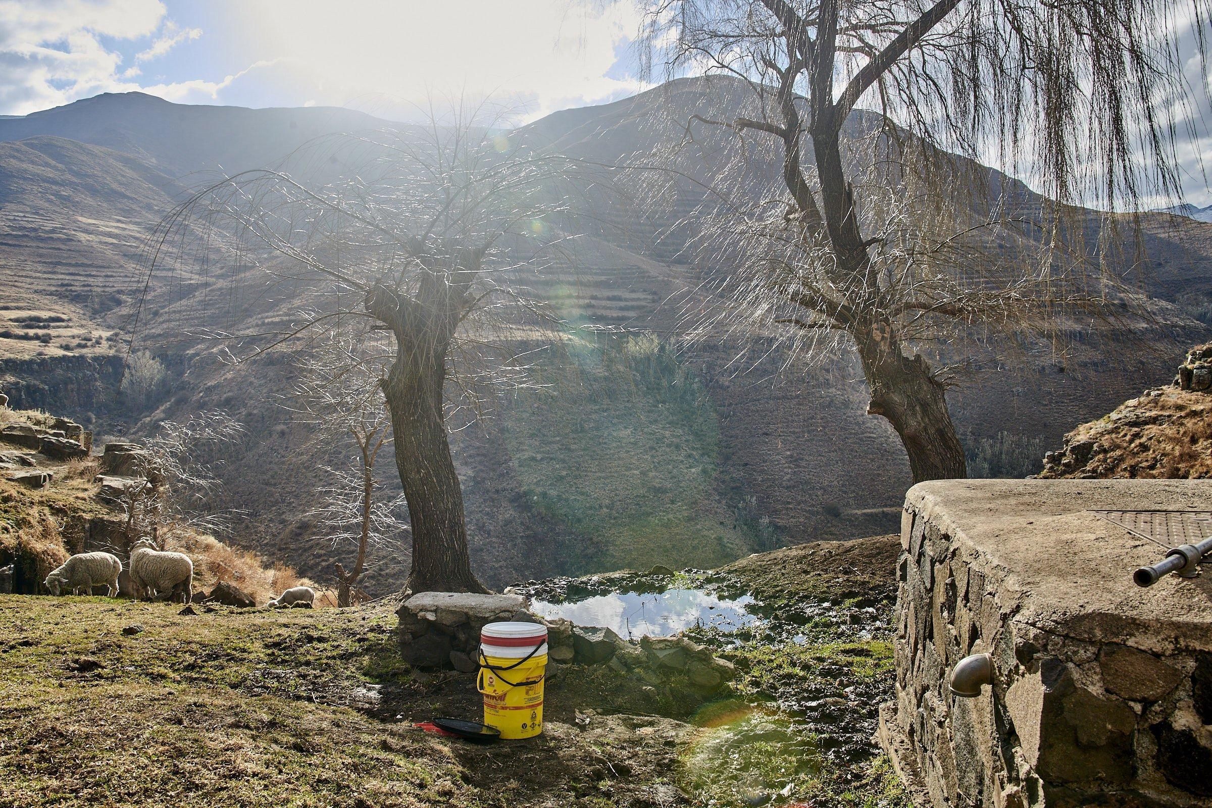 Schafe grasen vor einer Wasserstelle, die gegenüberliegenden Hänge wirken durch die Überweidung fast terassiert