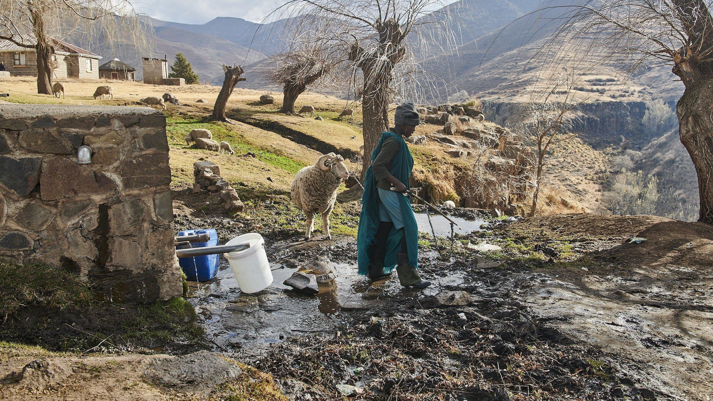 In den Bergen im Hochland von Lesotho steht ein Hirtenjunge mit seinem Schaf vor einer Wasserquelle