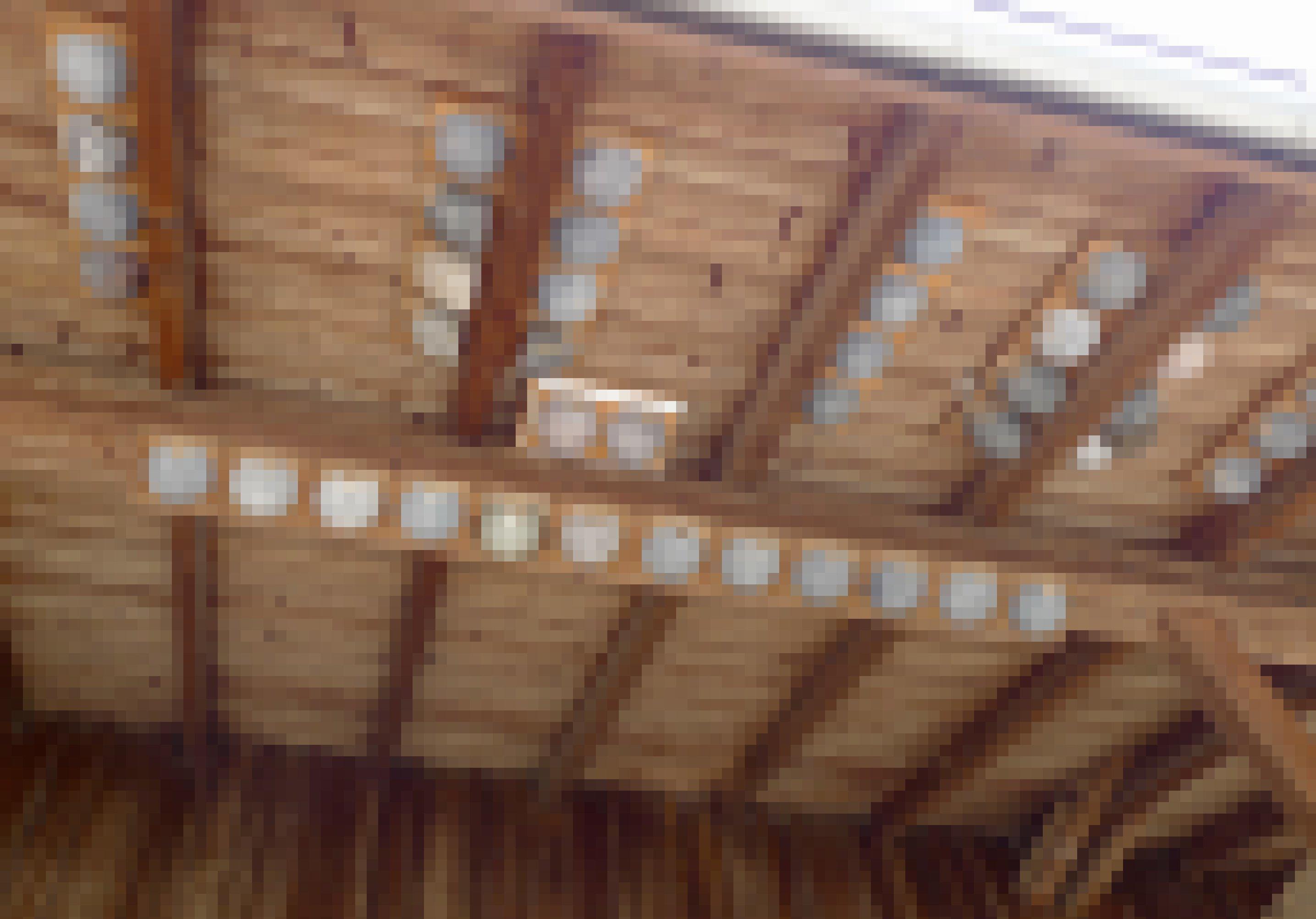Unter dem Dachfirst des Stalls auf dem Hof von Andreas Aebi sind viele künstliche Mehlschwalbennester angebracht.