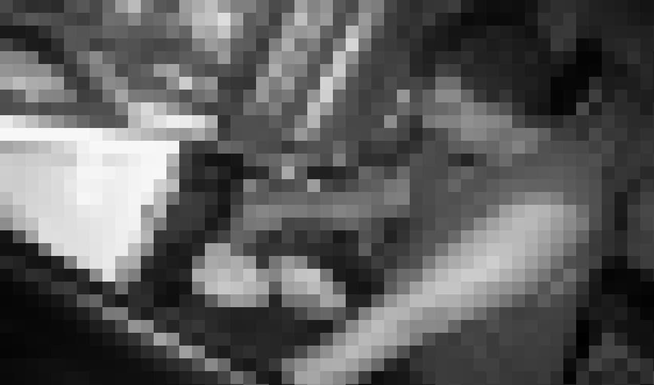 Ein Mann füllt Brei in eine Schale.