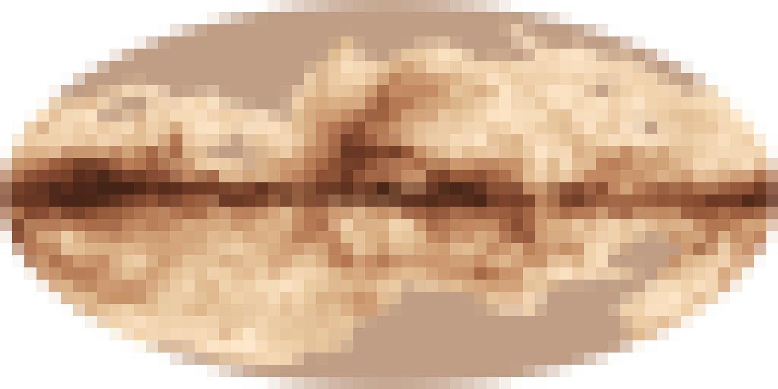 Diese Abbildung zeigt eine Himmelskarte des Magnefeldes der Milchstraße nach dem Messungen des Planck-Satelliten.