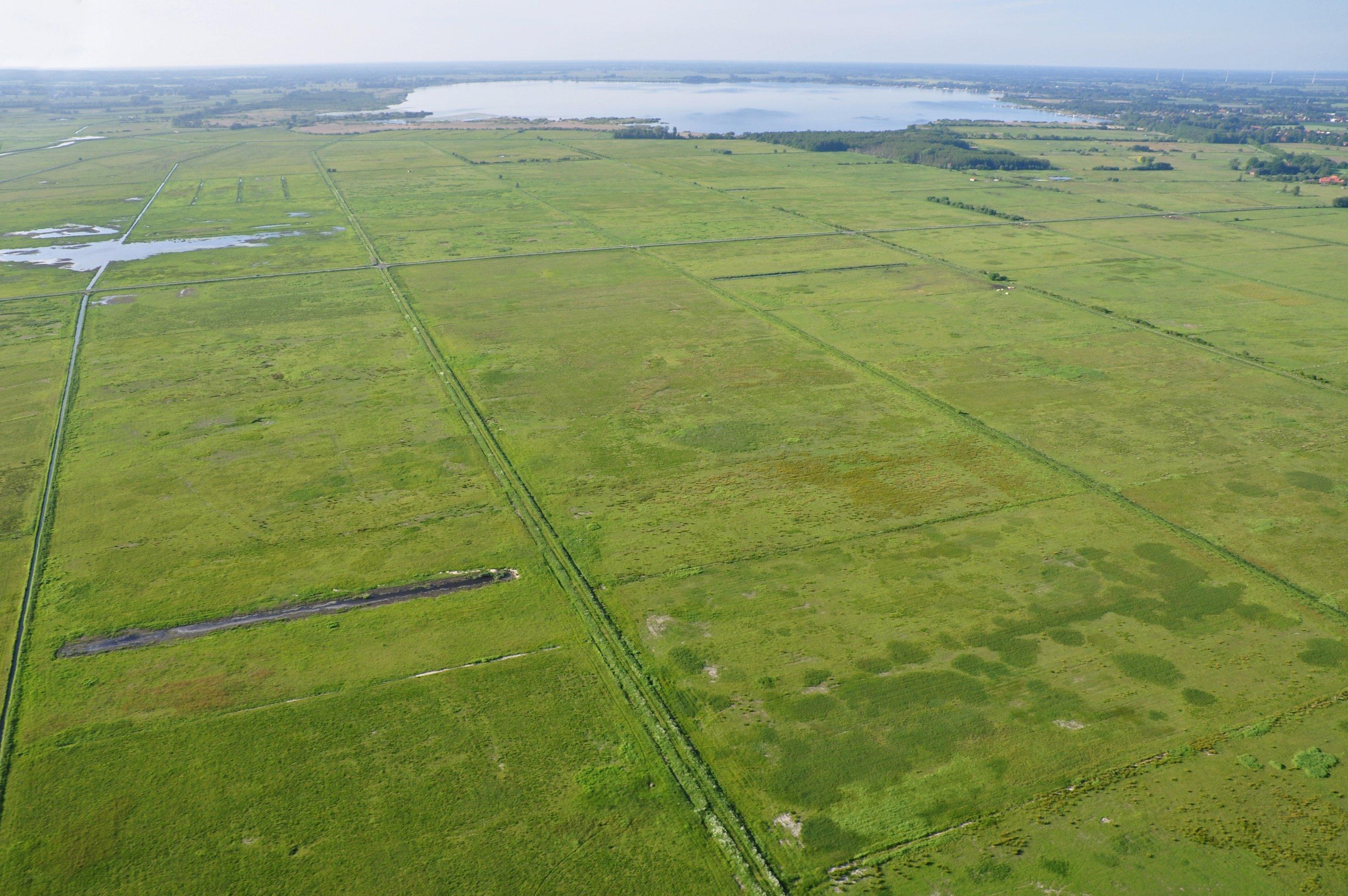 Luftaufnahme des Ochsenmoors.
