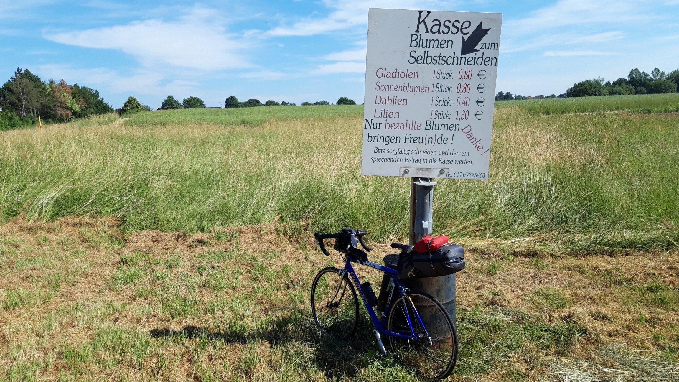 """Rad Rennrad lehnt an einem Pfosten mit der Aufschrift """"Blumen zum Selbstschneiden"""" sowie Preisliste darunter. Allerdings steht nur hohes Gras hinter dem Schild."""