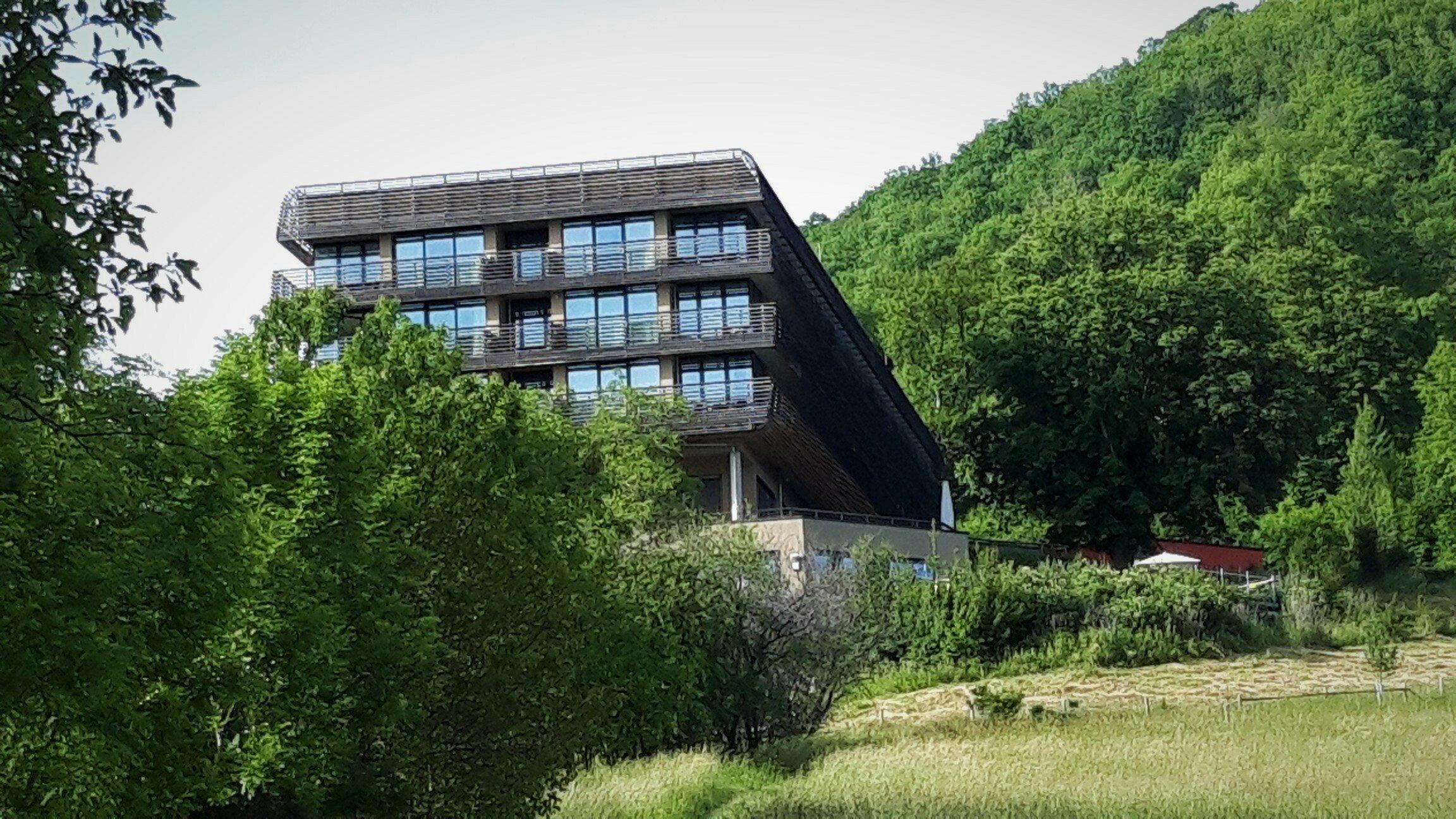 Zwischen Laubbäumen ragt der Kubus des Hotels heraus, dessen Holzfassade das Gebäude aber in Einklang mit der Natur bringt.