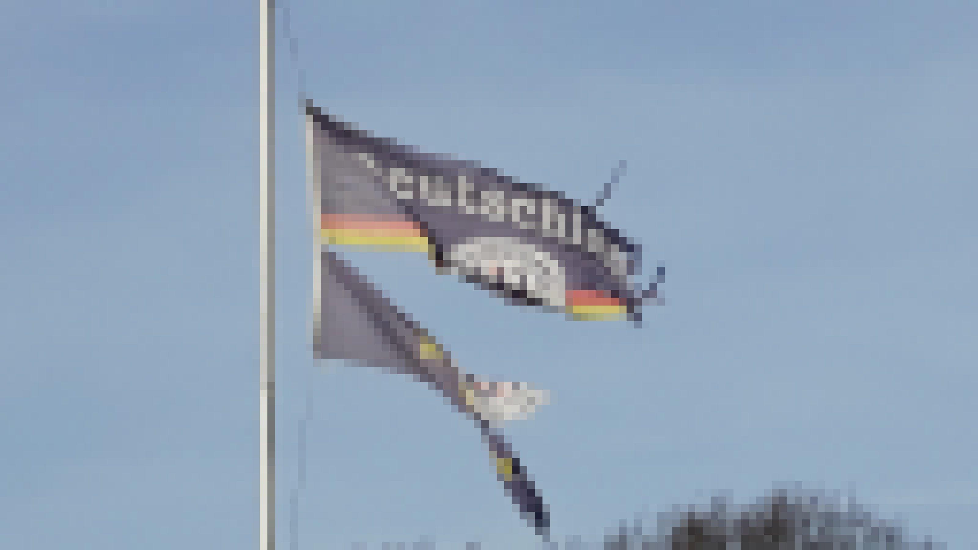 Zerrissene Deutschland-Flagge im Wind flatternd