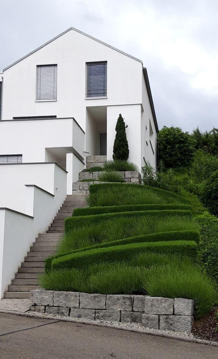 Haus, Treppenaufgang und Beete sind akkurat auf rechteckige und gerade Formen getrimmt und penibel sauber gehalten.