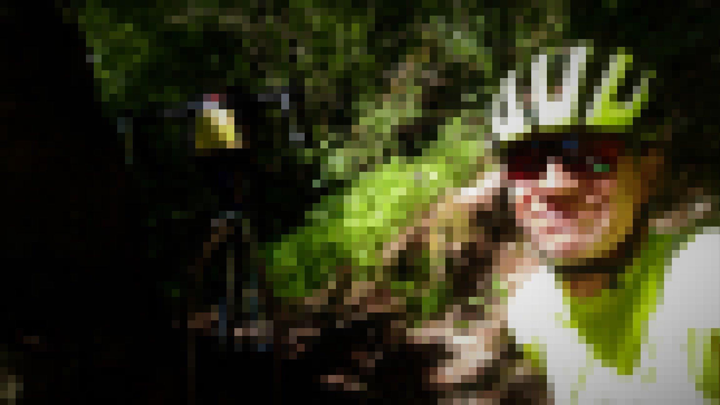 Selbstporträt mit Helm, im Wald; das Rad lehnt an einem Felsen.