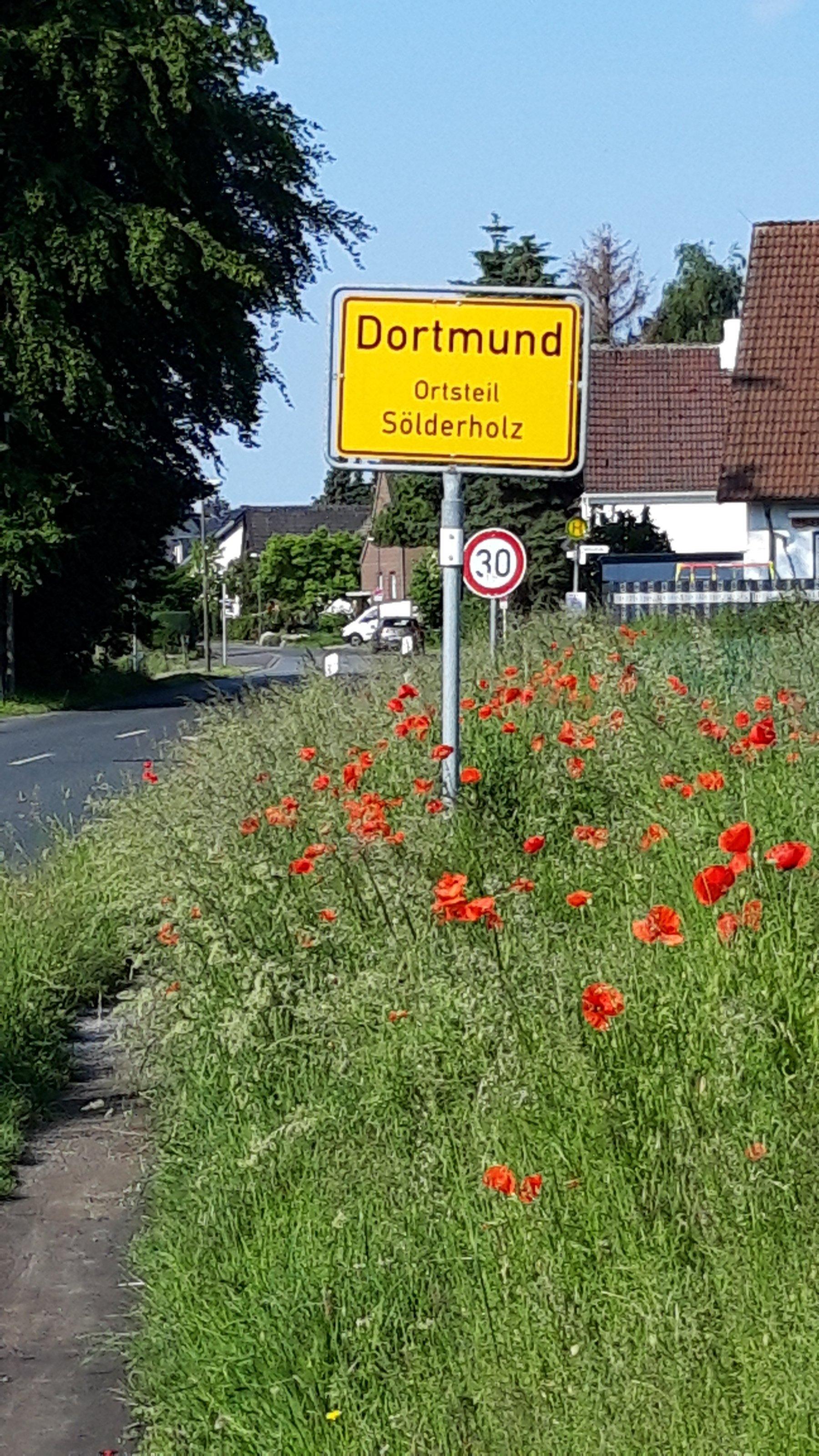 Ortsschild von Dortmund mit Mohnblumenwiese.