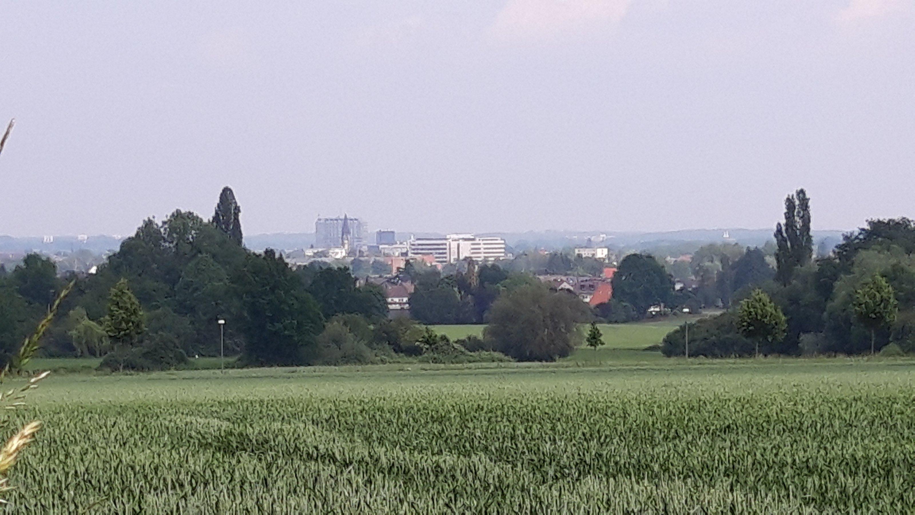 Felder vor Hamm (im Hintergrund)