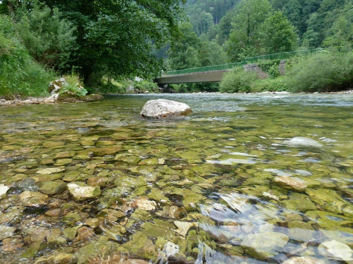 Fluss mit Kiesbett, Uferpflanzen, Brücke im Hintergrund