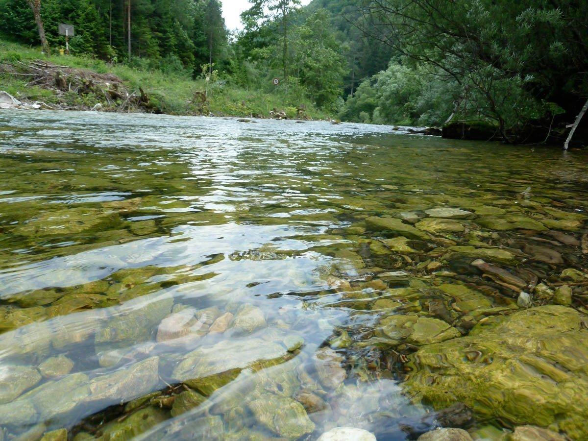 Fluss Schwarza, Wasser mit Schotterbett.