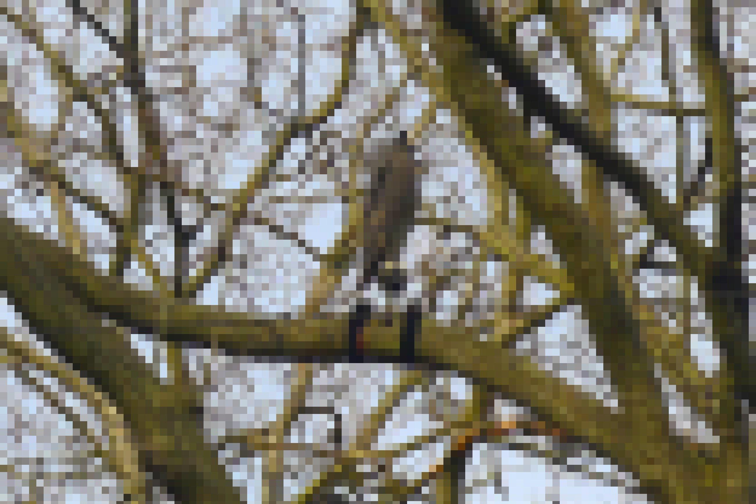 Eine Uhu-Attrappe in einem Baum.