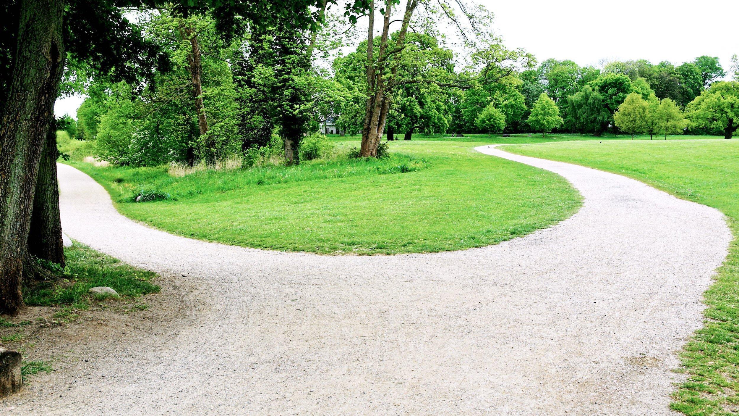 Das Bild zeigt eine Weggabelung in einen Park. Der Pfad nach rechts führt in sanften Rundungen einen kleinen Hügel hinauf, der Pfad links biegt um einen Baum leicht nach unten und führt dann gerade und eben weiter, bis er außerdem Sicht gerät.