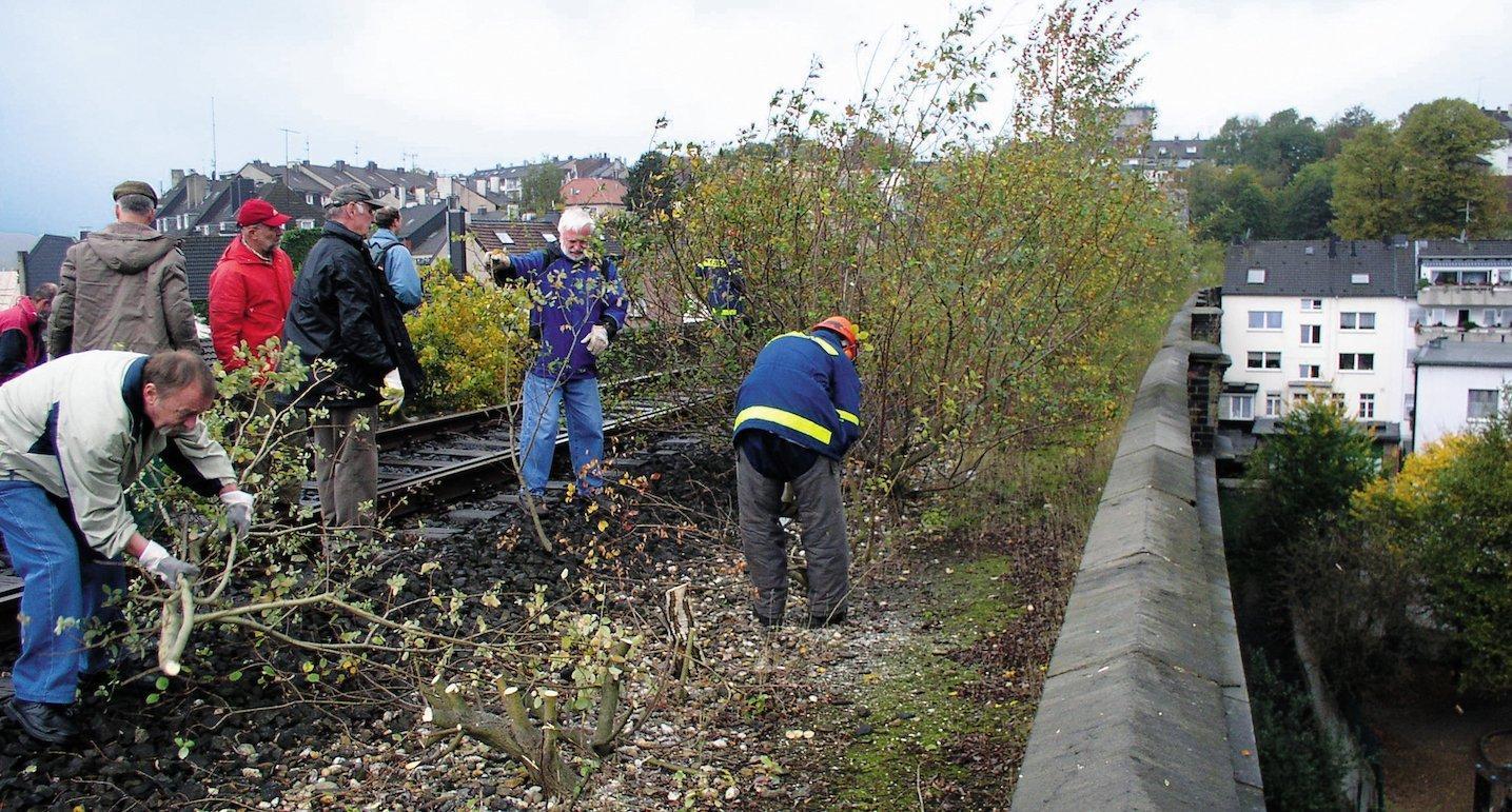 Mehrere ältere Herren pflanzen gemeinsam Bäume an einer Bahntrasse. Im Hintergrund sind Häuser zu sehen.