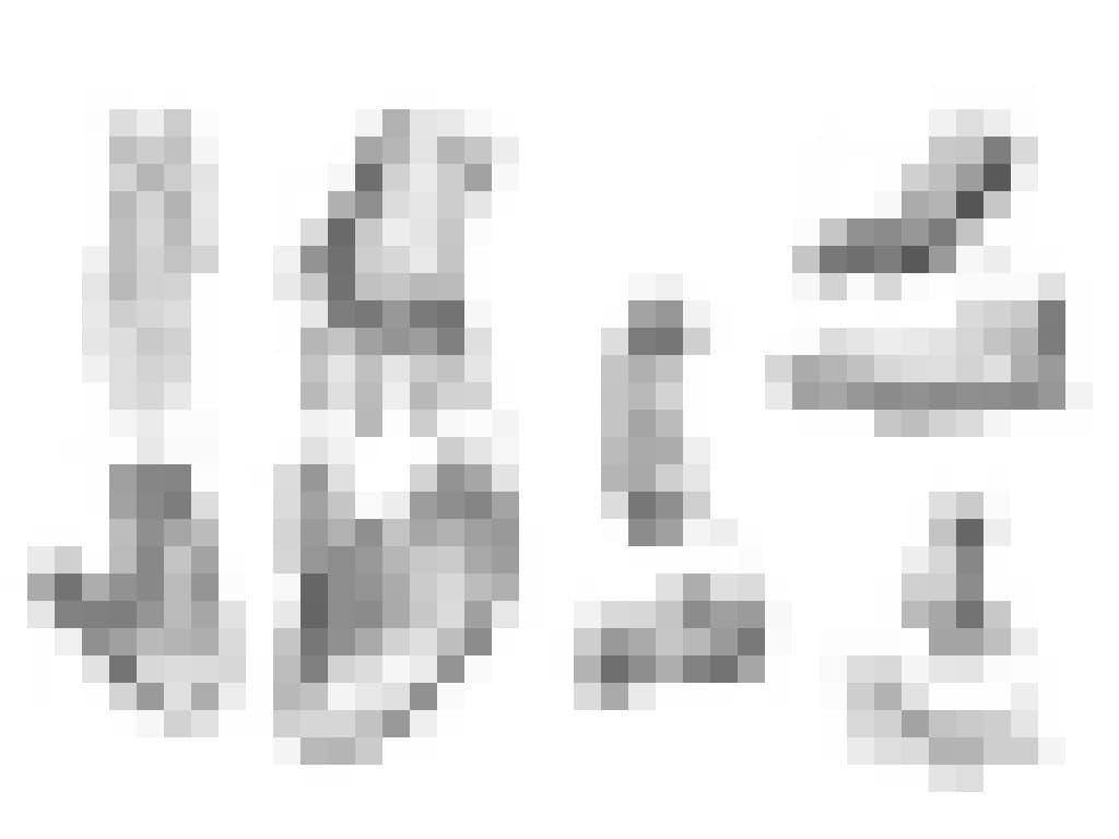 Auf dem Bild sind historische Schwarzweiß-Zeichnungen von den Händen und Füßen verschiedener Affenarten zu erkennen: Schimpanse, Gorilla, Orang-Utan, Pavian und Makake. Bei allen ist deutlich zu sehen, dass sie einen abspreizbaren Daumen beziehungsweise großen Zeh besitzen und hervorragend zum Greifen und Klettern geeignet sind. Besonders die Hände der Schimpansen und Gorillas verblüffen durch ihre Ähnlichkeit zum Menschen – nur dass der Daumen deutlich kleiner ist.