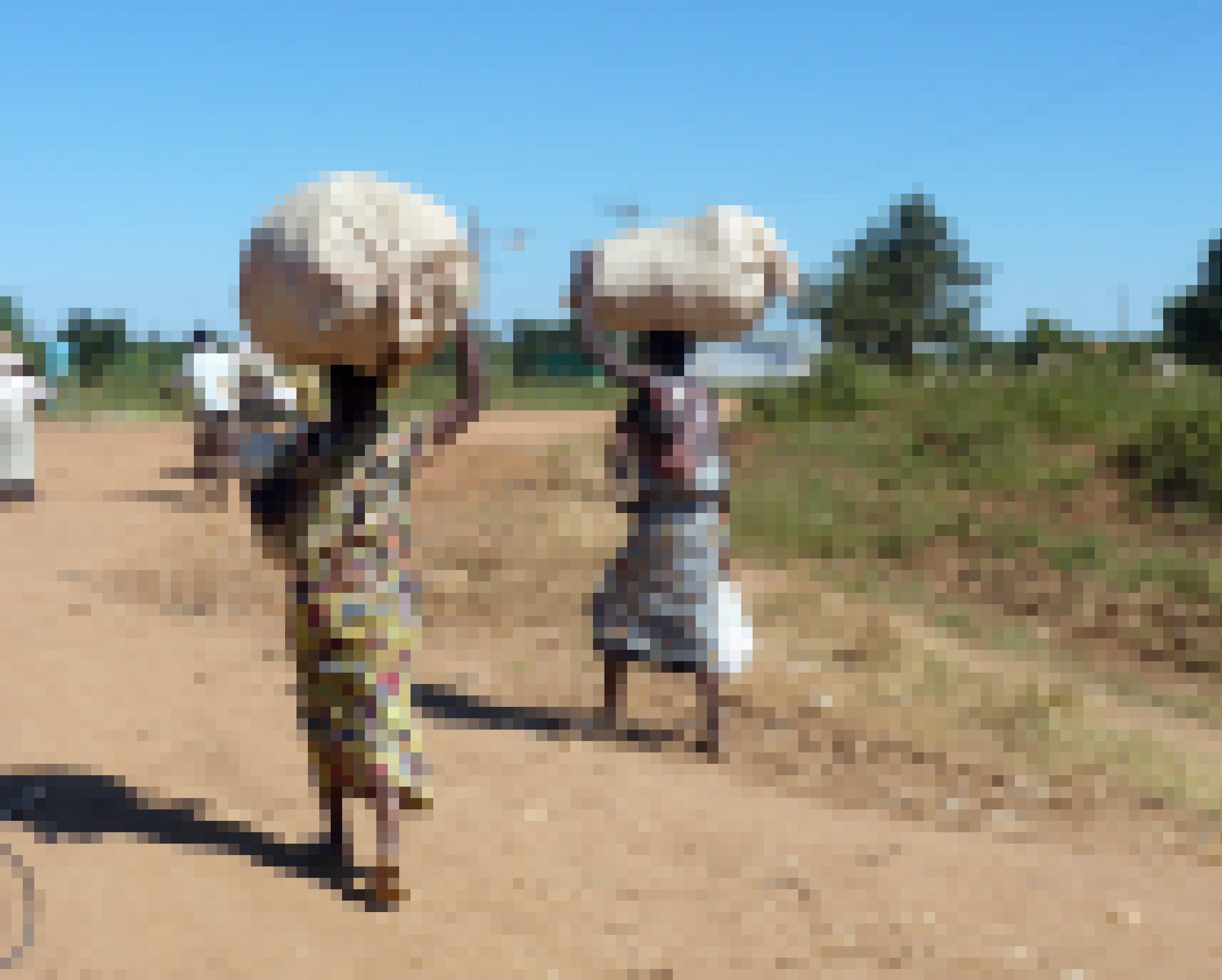Das Bild zeigt zwei Frauen, die schwere Säcke auf dem Kopf transportieren, die Straße ist staubig, der Weg zum Markt weit..