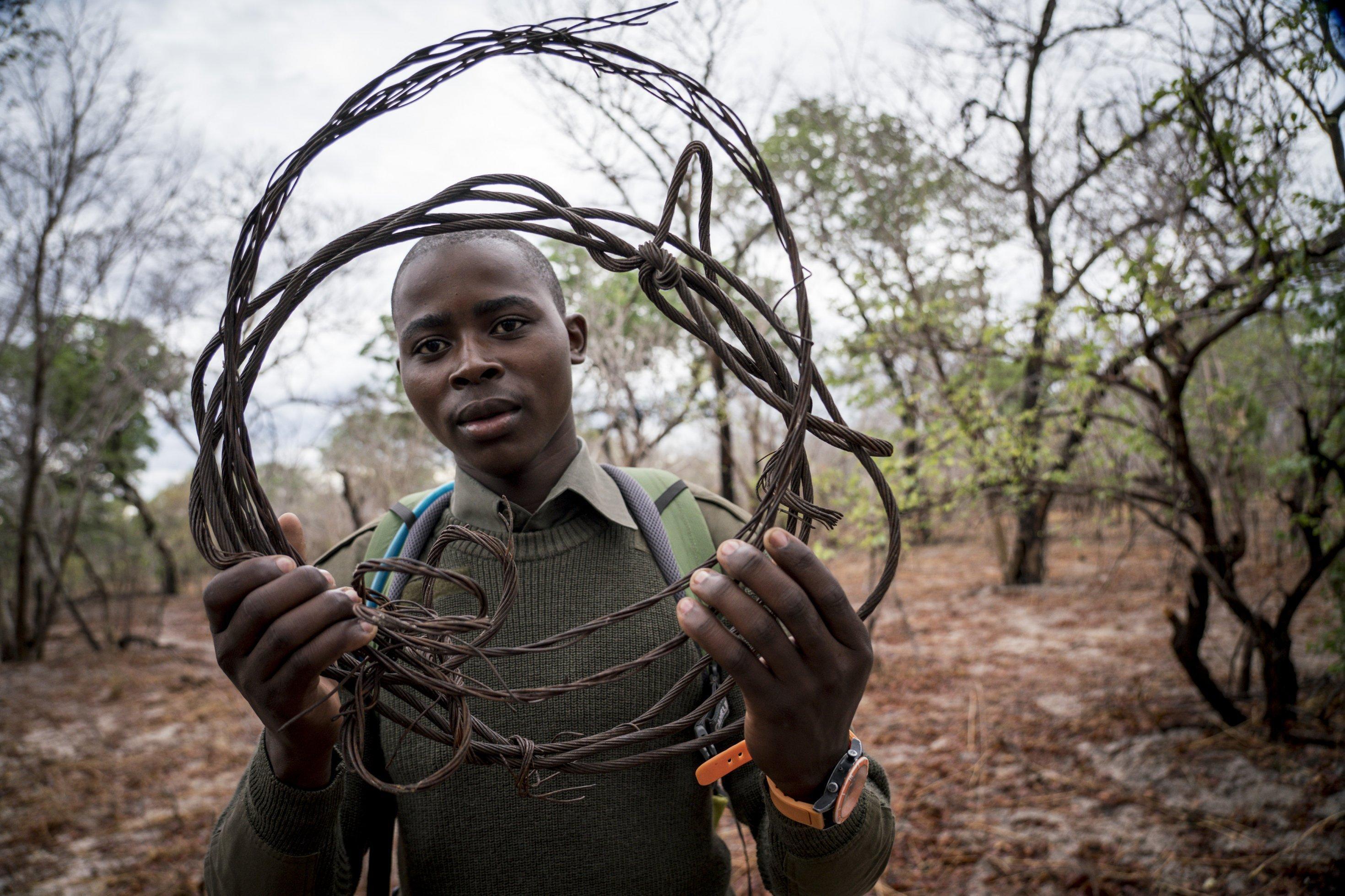 Ein Mitglied der Anti-Wilderer-Einheit hält eine Drahtfalle in den Händen und schaut hindurch