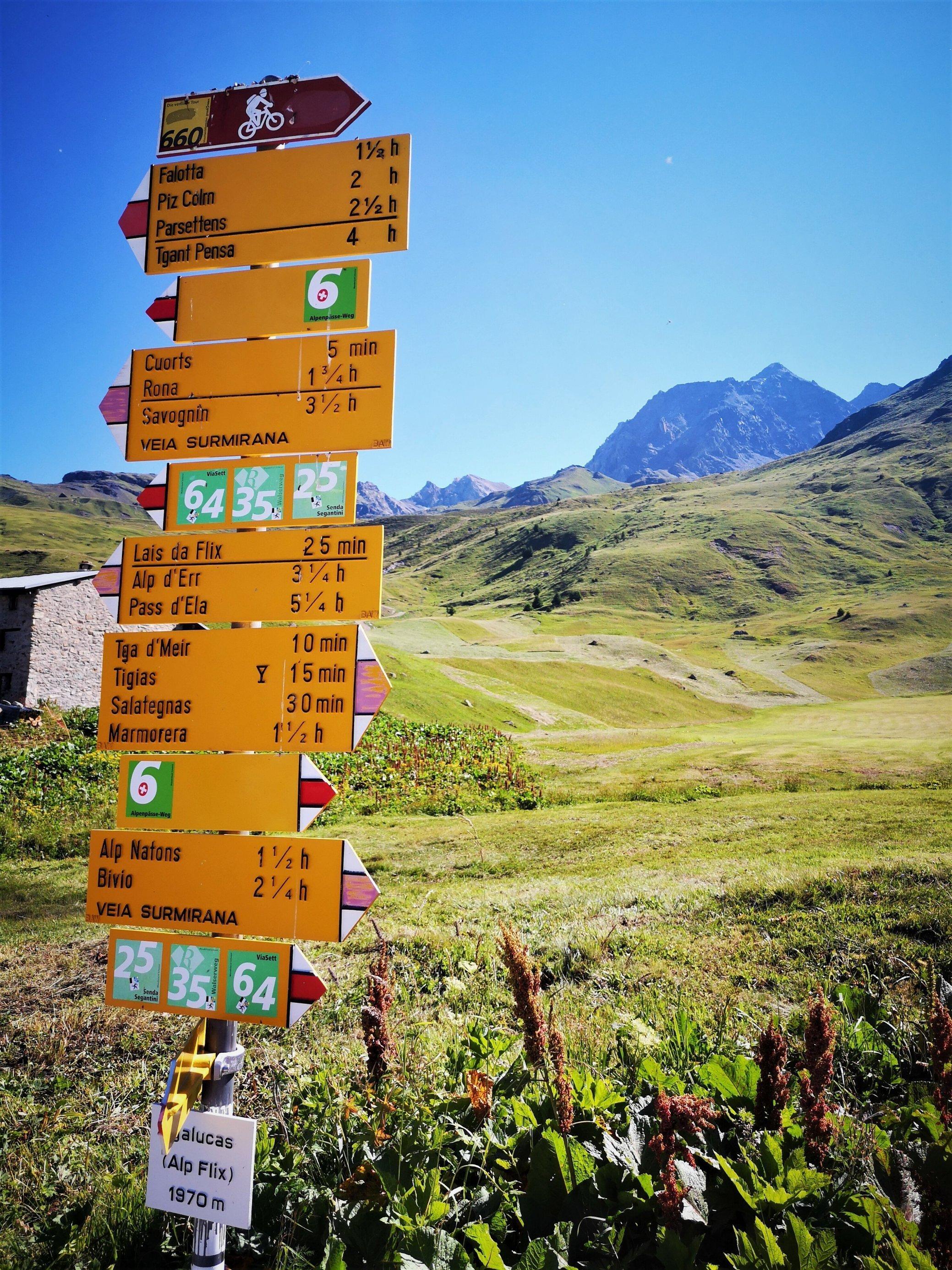 Knallgelber Schilderwald mit Hinweisen für Radfahrer und Wanderer auf der Alp Flix, hinter der ein spitzes, hohes Bergmassiv aufragt.