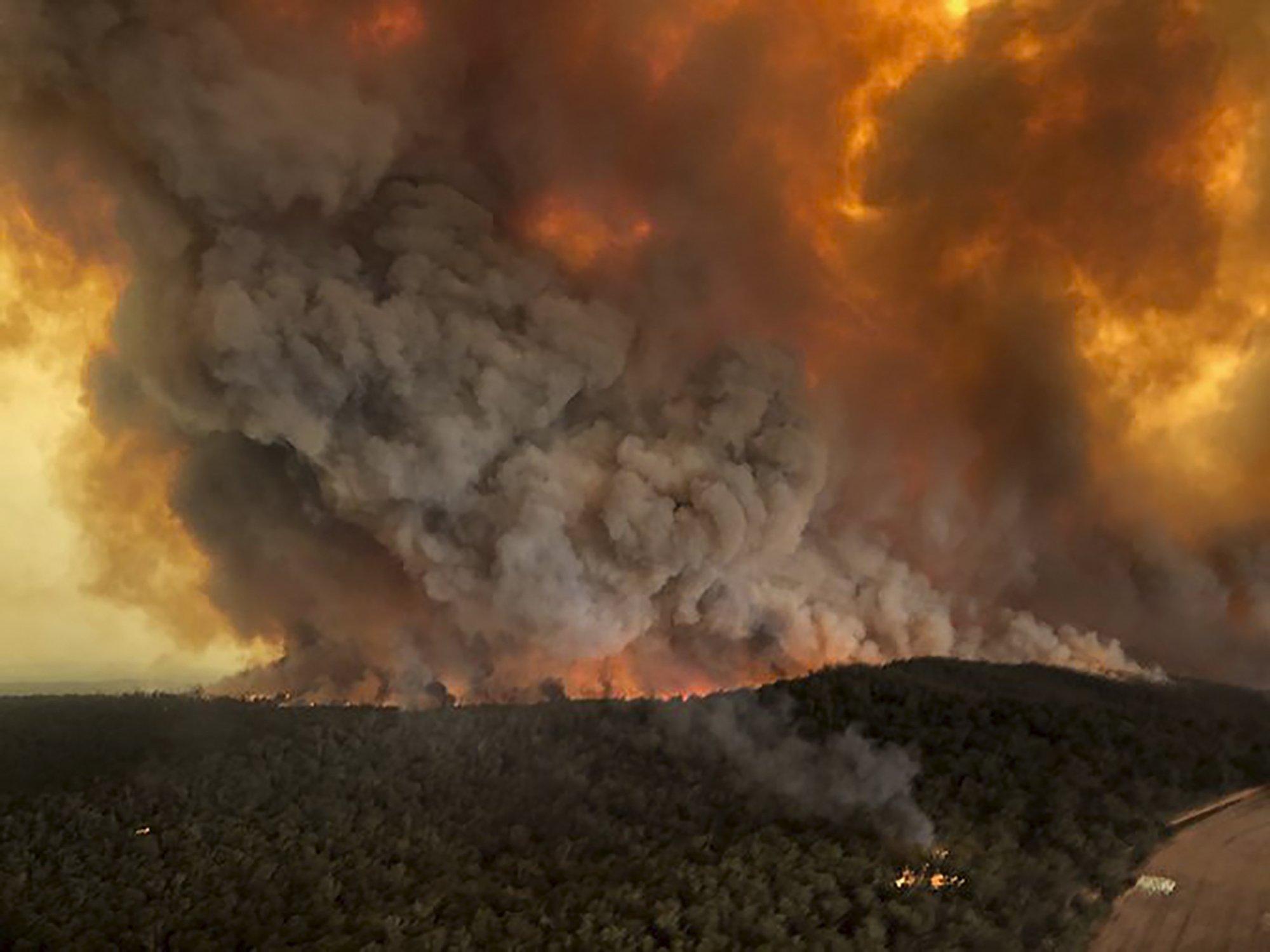 Das Bild ist aus einem Flugzeug oder Hubschrauber heraus aufgenommen. Es zeigt im Vordergrund einen grünen Wald, der aber im hinteren Teil des Bilds in Flammen steht.