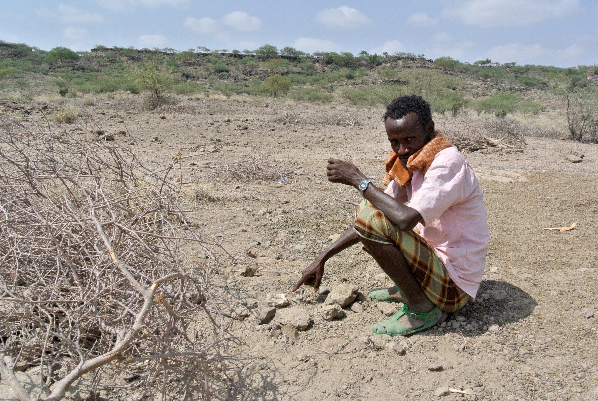 Das Foto zeigt Team-Mitglied Ali Bereino, der  in der äthiopischen Afar-Wüste neben der Fundstelle in Miro Dora hockt und auf einen fossilen Oberkiefer zeigt, den er im Wüstensand entdeckt hat. Später stellt sich heraus, dass hier der komplette Schädel eines Australopithecus anamensis liegt