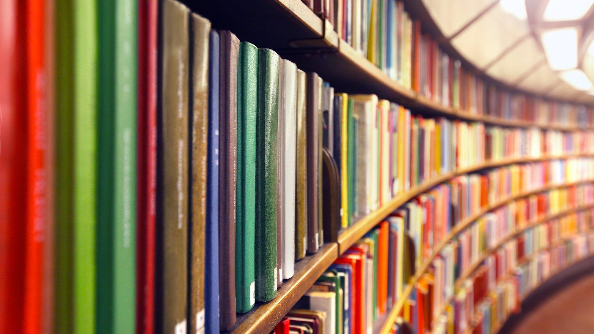 Ein rund geschwungenes Bücherregal mit bunten Büchern, die nach hinten hin unschärfer im Bild zu erkennen sind.