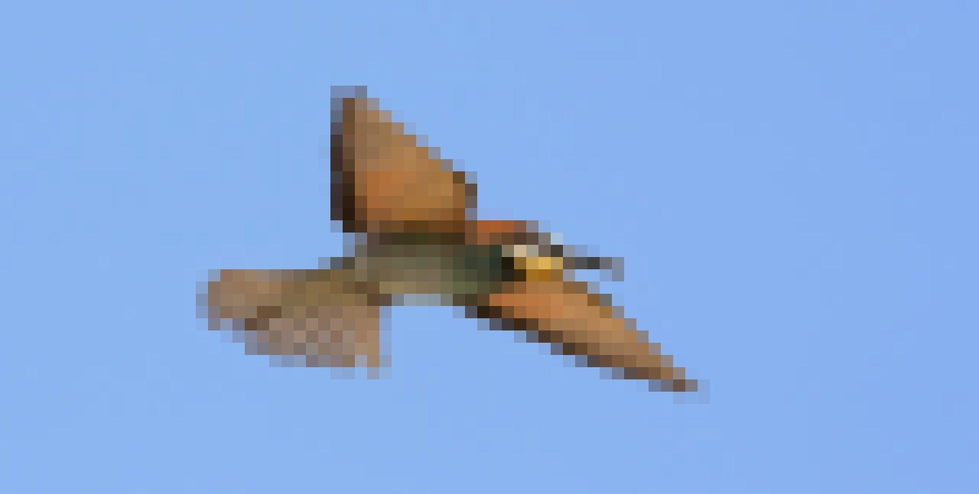 Ein Bienenfresser jagt Insekten in der Luft